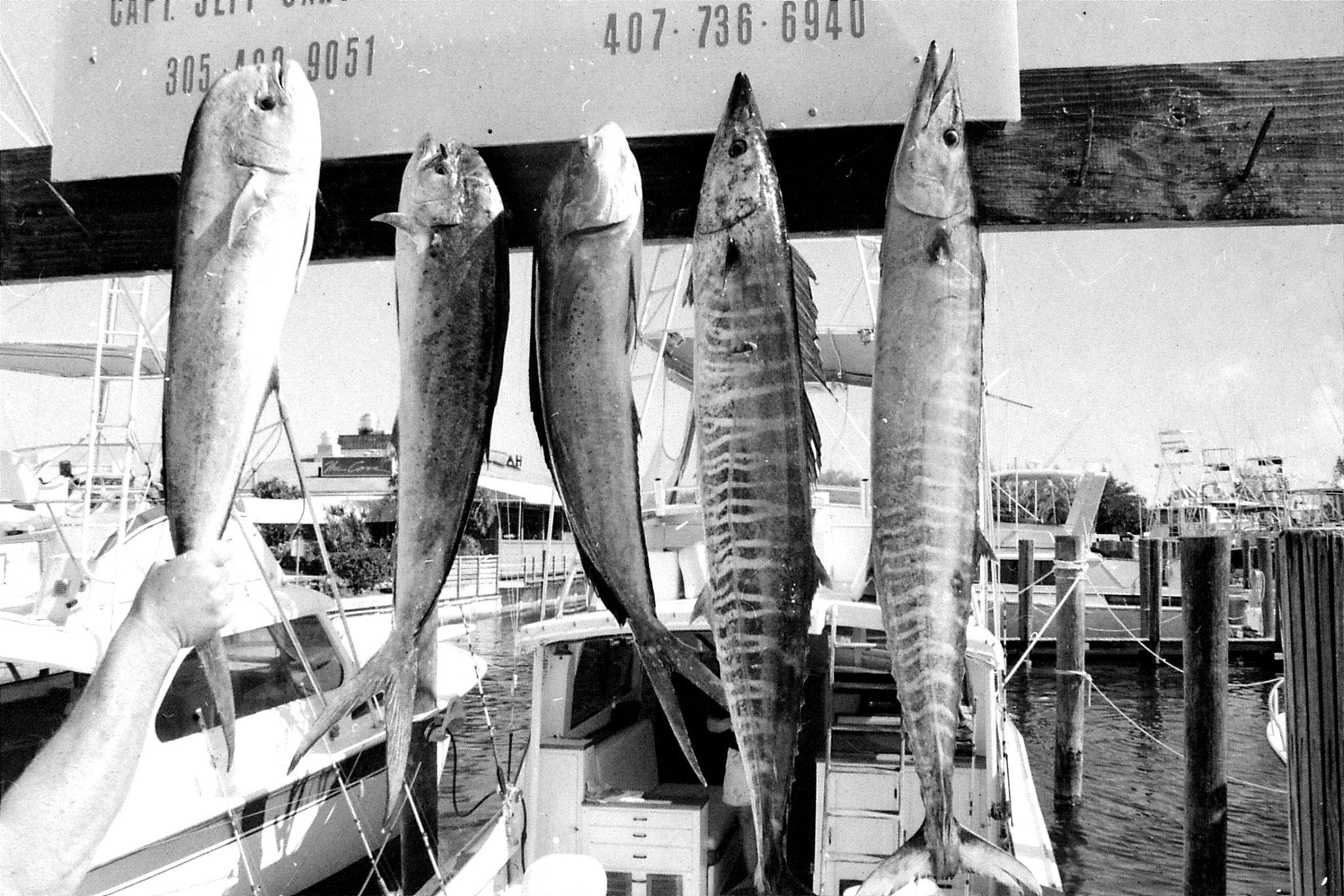 12/1990: 23: Fishing trip