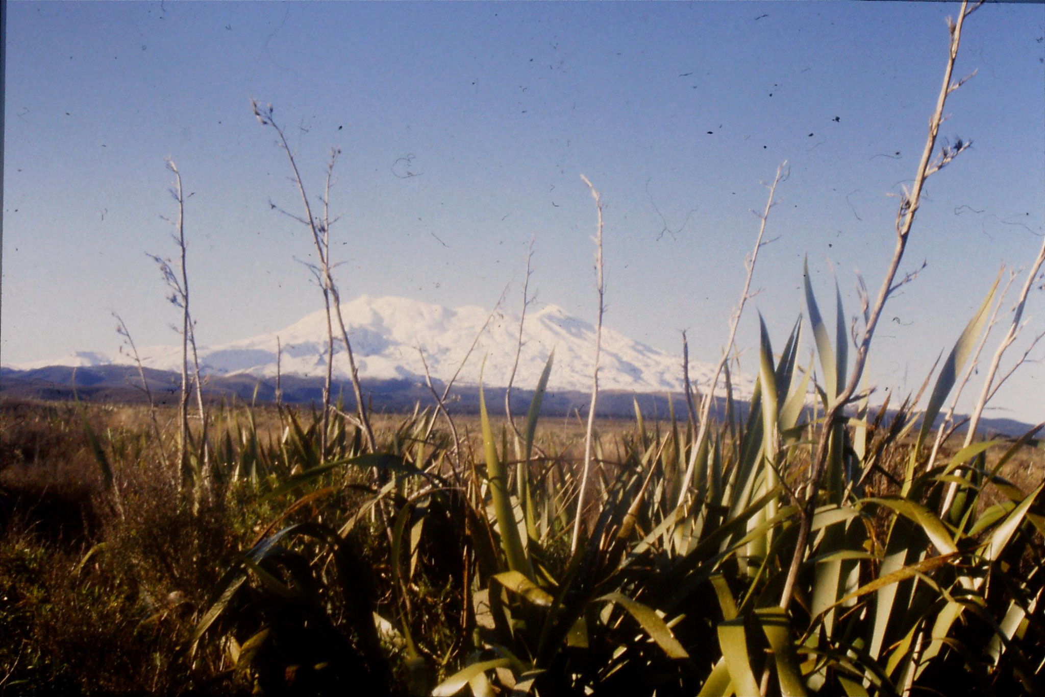 30/8/1990: 8: Mt Ruapehu from west