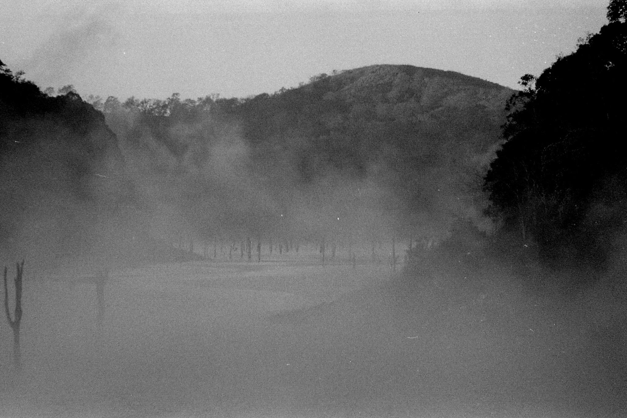 097/24: 23/2/1990 Periyar mist