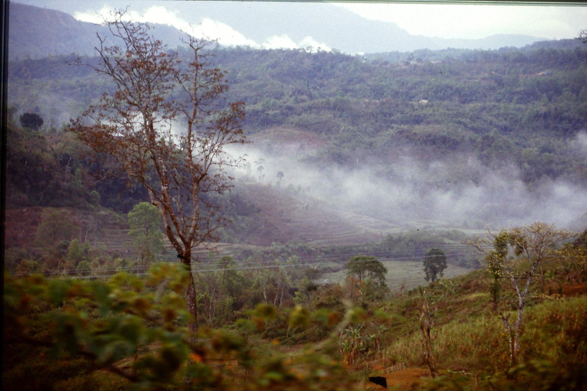 109/29: 12/4 In Cachar Hills - Hills near Haflong