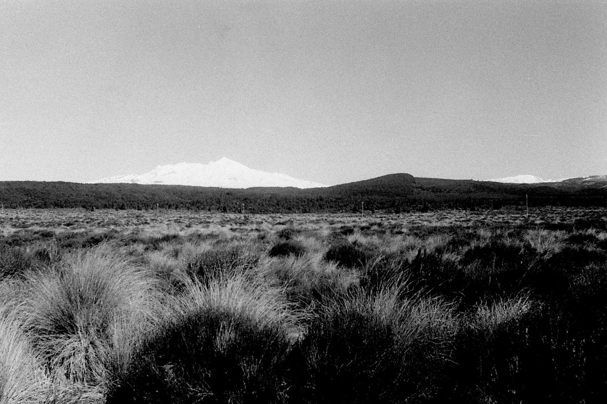 30/8/1990: 1: Ruapehu, Near & Tang.. panorama