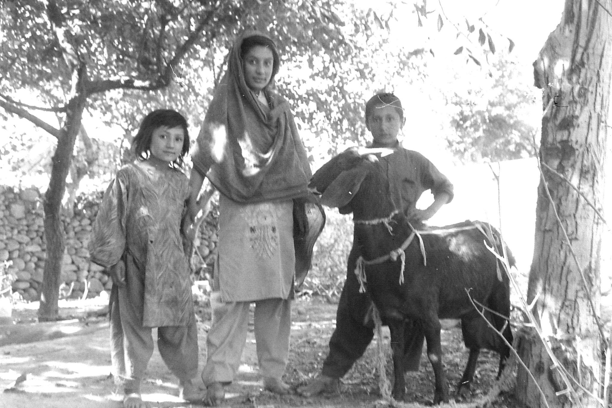 8/10/1989: 36:Gilgit