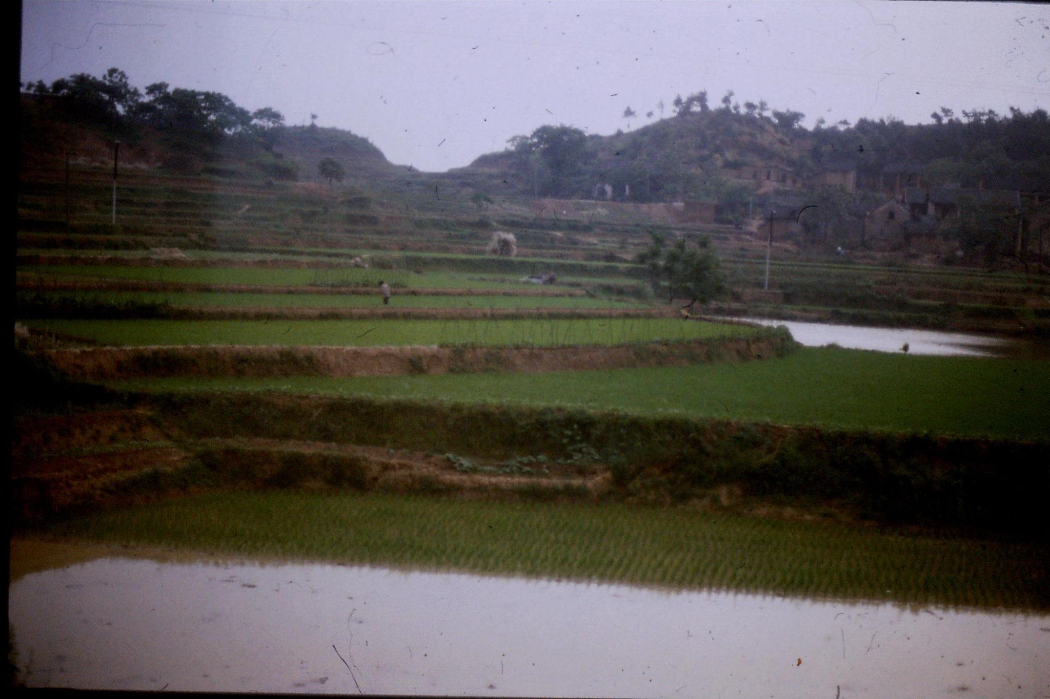 20/5/1989: 15: Guangzhou to Hangzhou, 1200