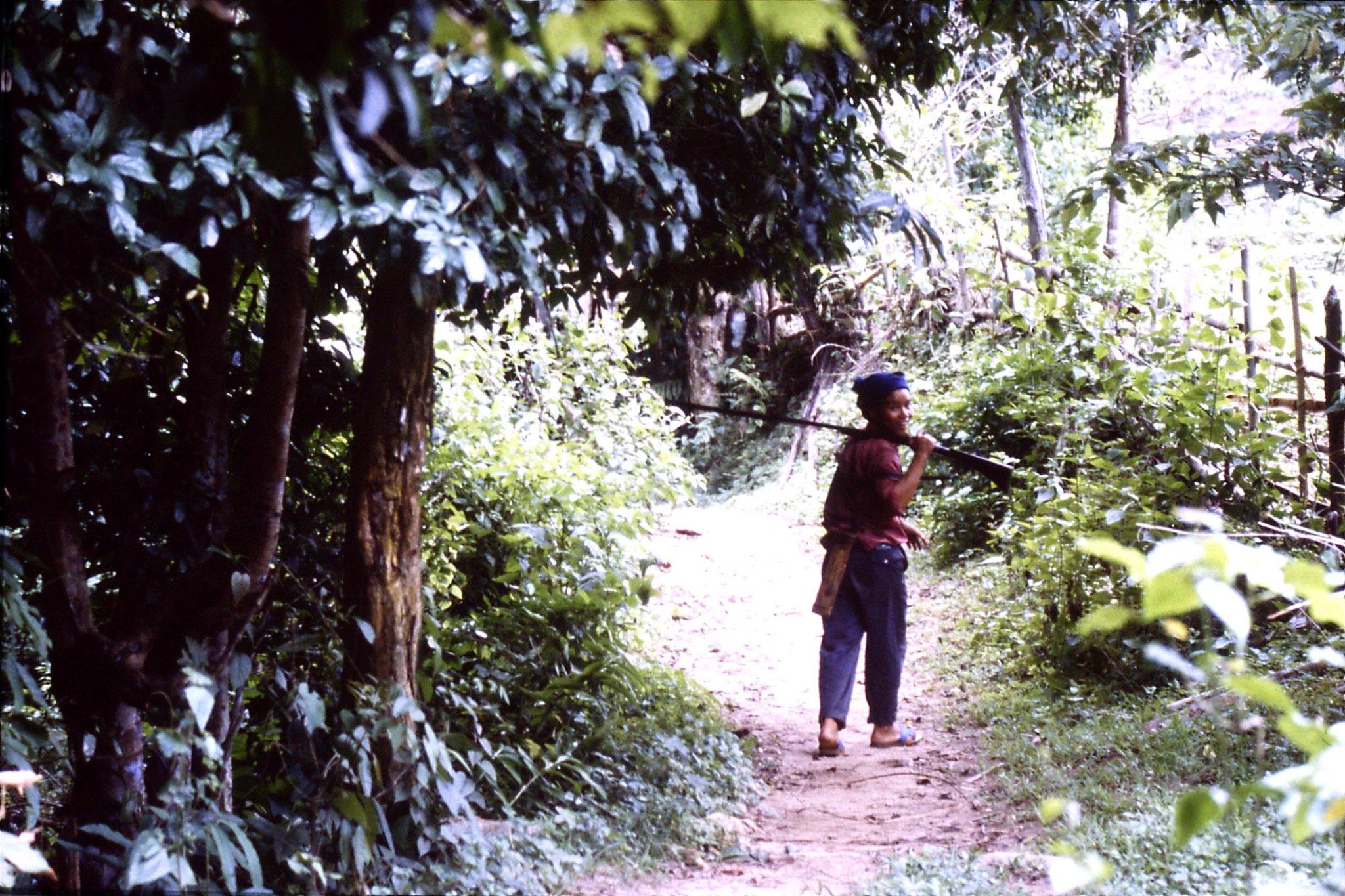 12/6/1990: 12: Trek - Mae Mi village (Karen)