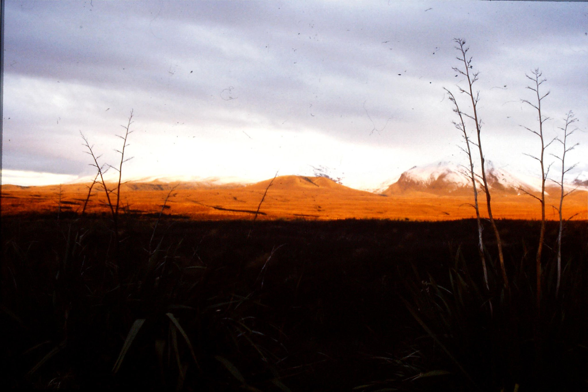 29/8/1990: 5: sunset on Mt Ngauruhoe
