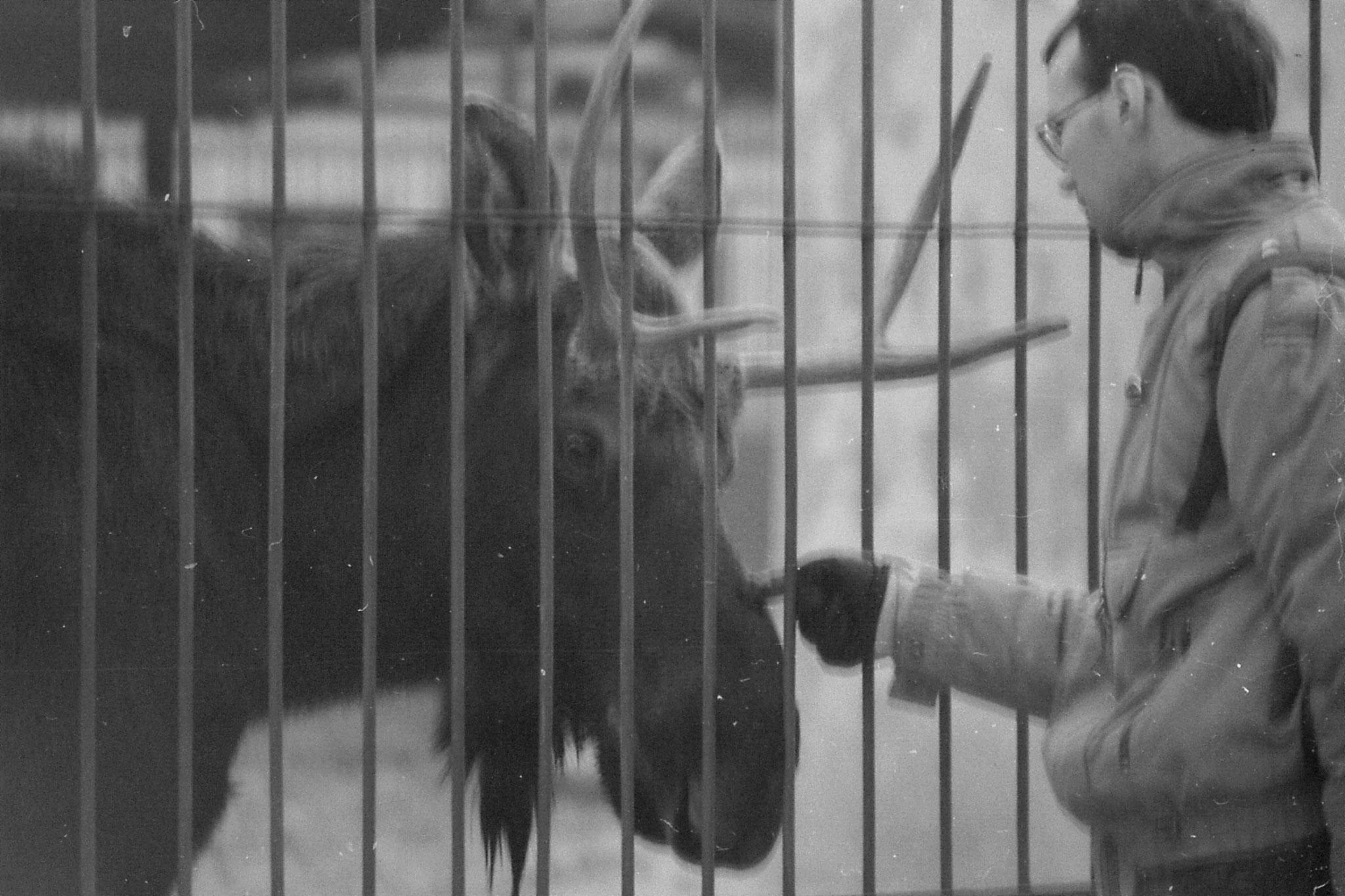 19/11/1988: 14: Beijing Zoo