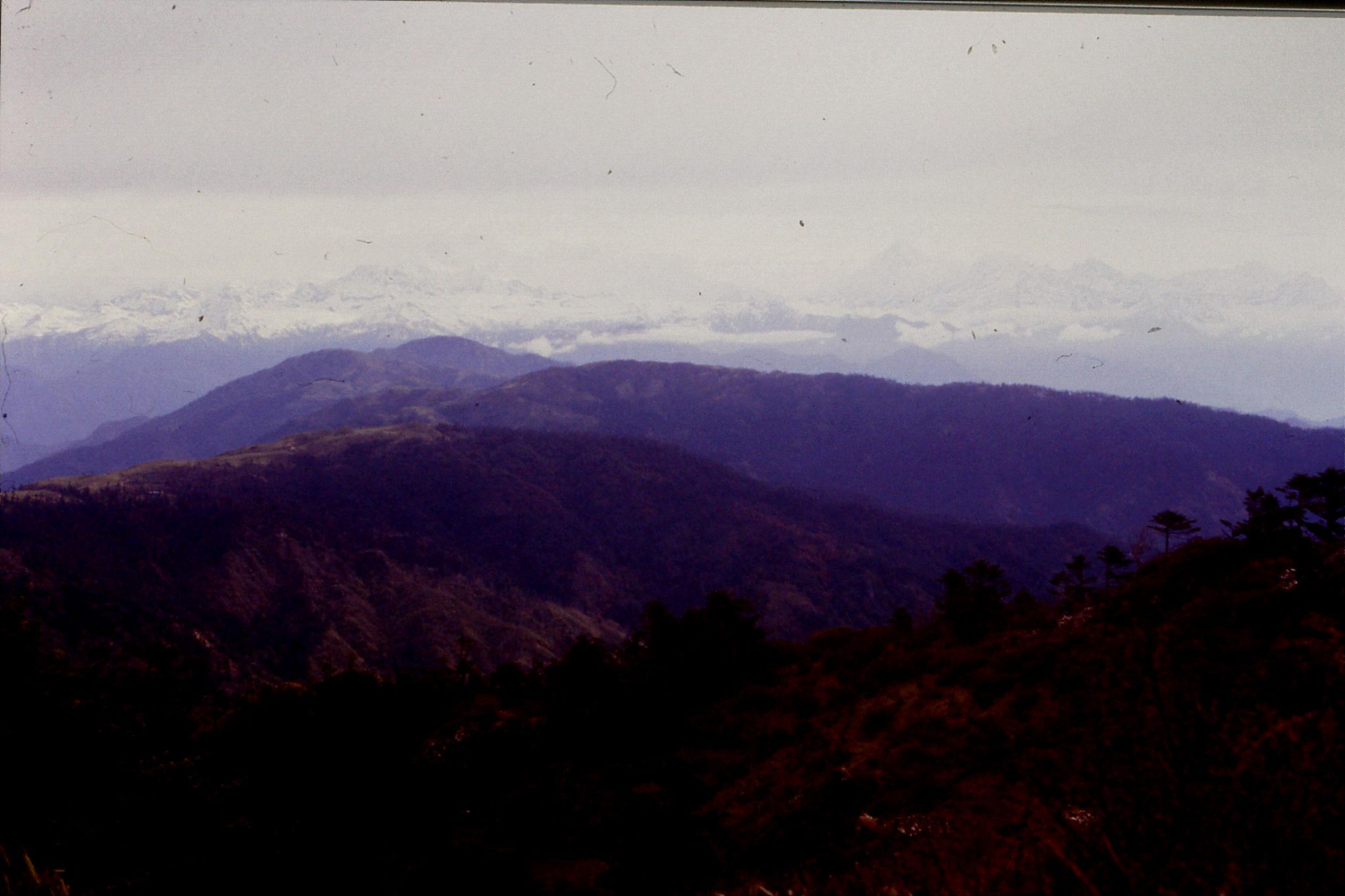 7/5/1990: 9: Sandakpu, view towards Kanchenjunga