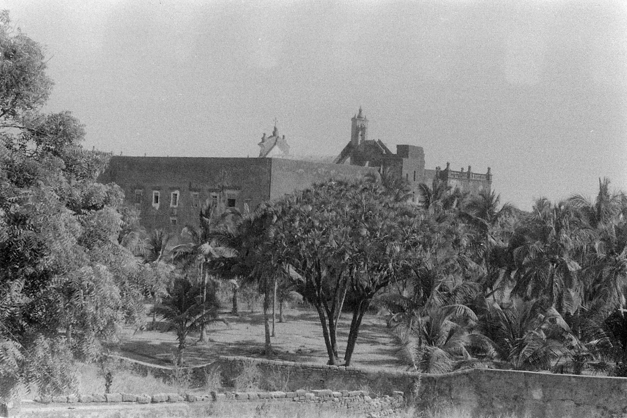 16/12/89: 11: Diu:  palm trees and St Peter's church