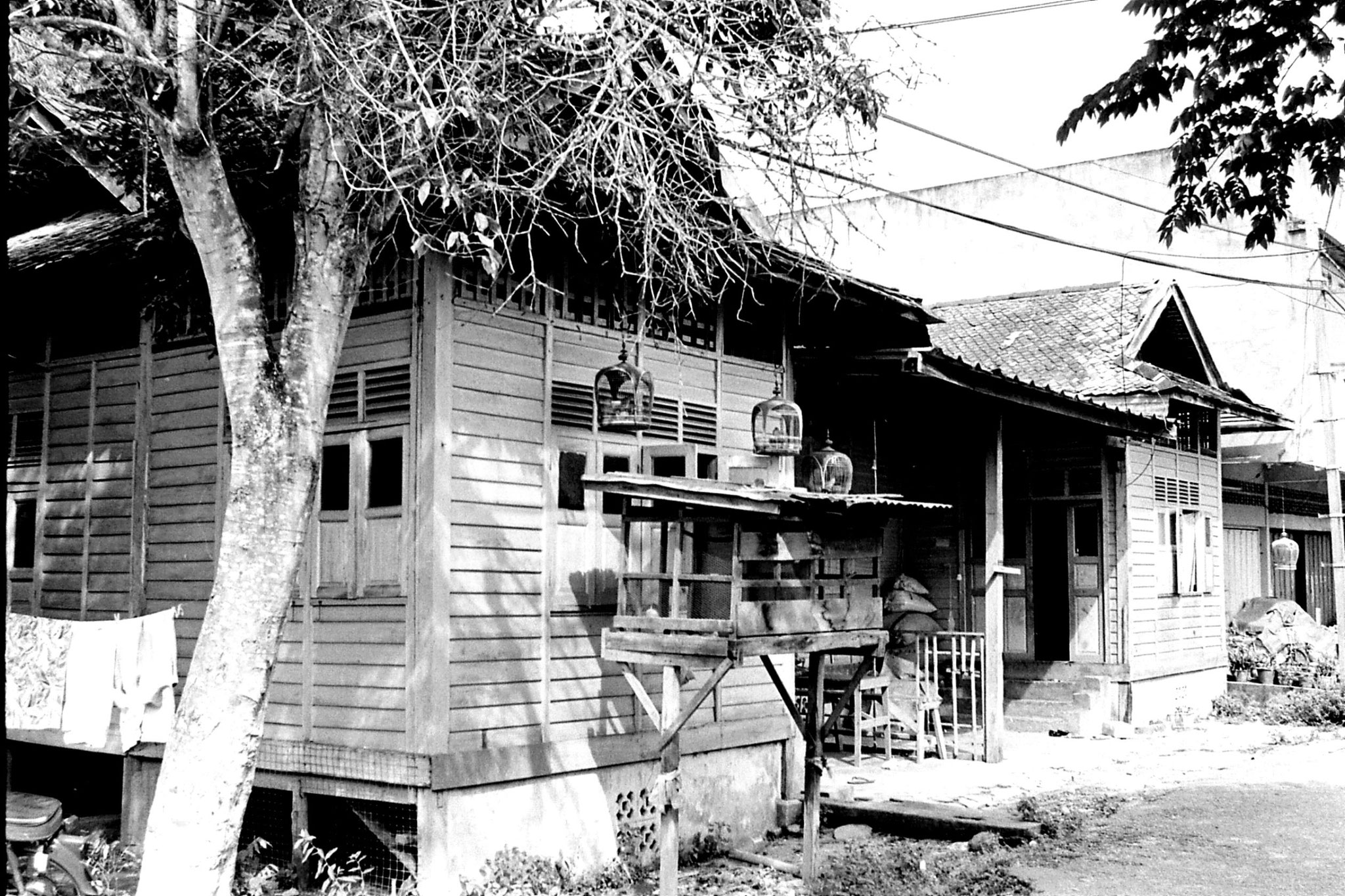21/6/1990: 31: Wakaf Bharu, house and bird cages