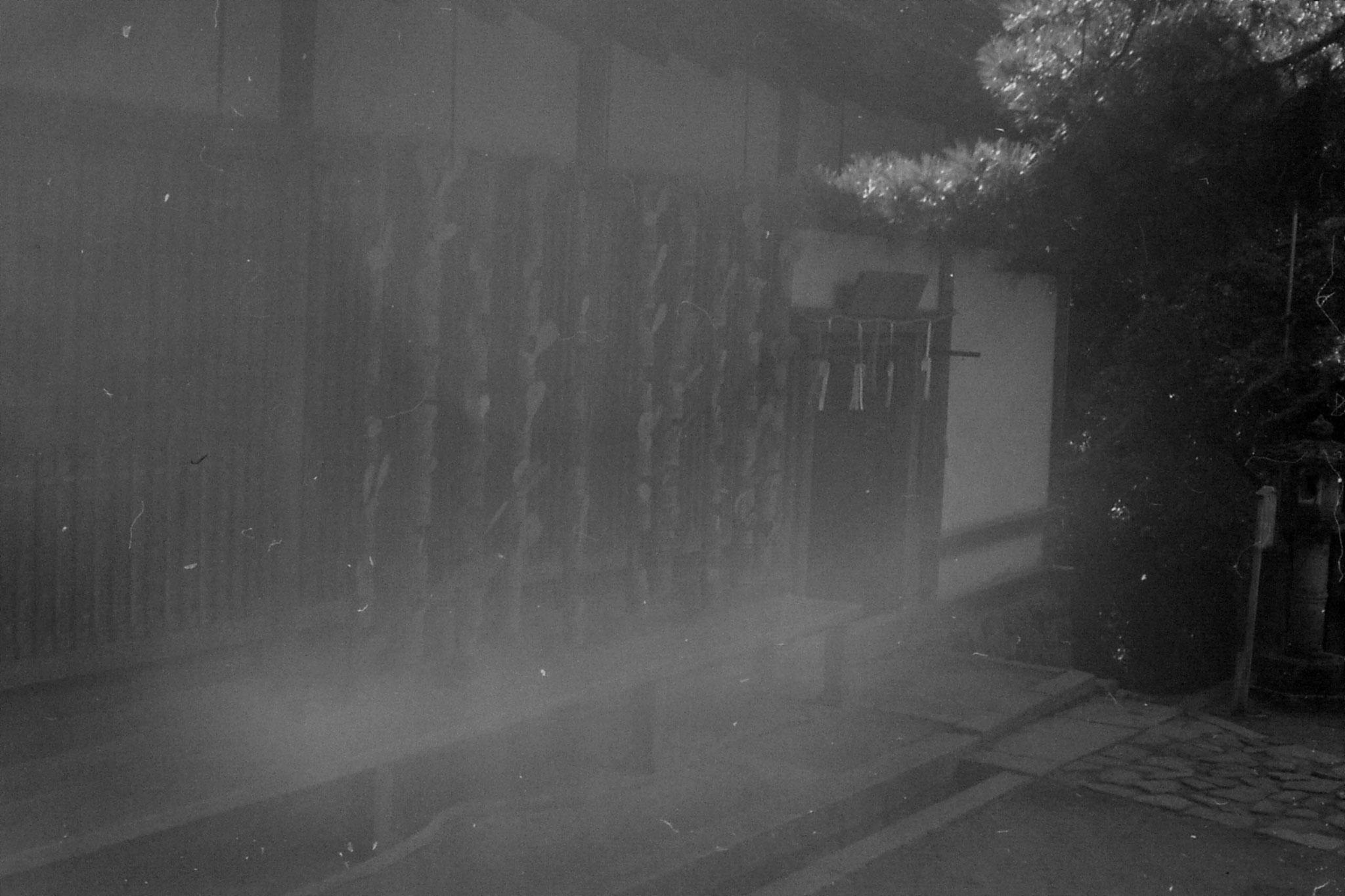 25/1/1989: 1: Kasuga, Wakamiya-jinja
