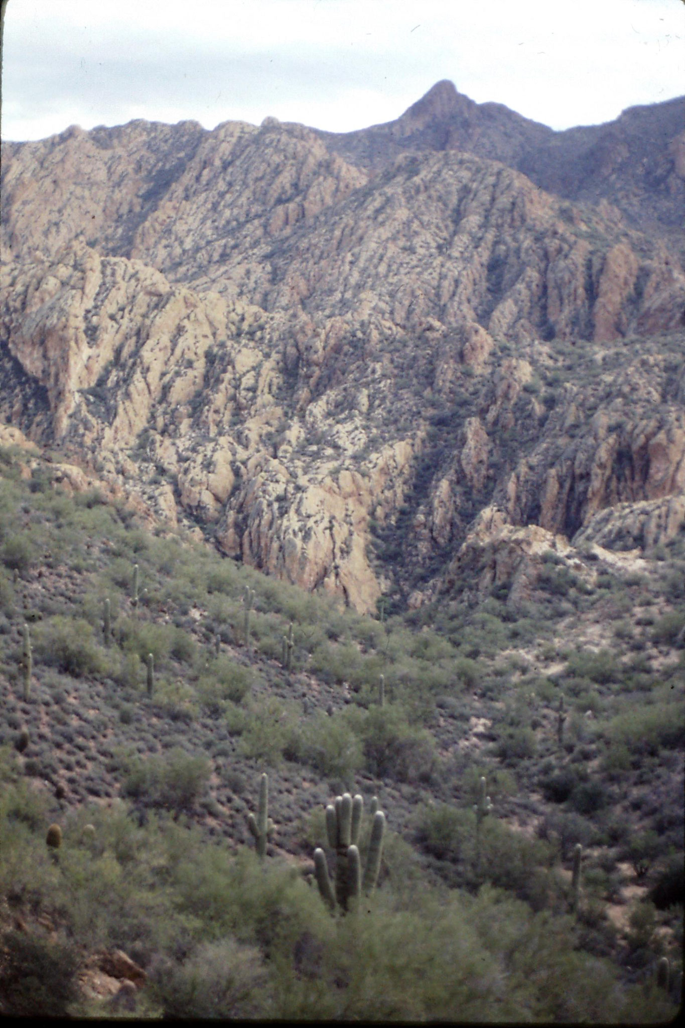 12/12/1990: 8: valley and mountains to south of Apache Trail