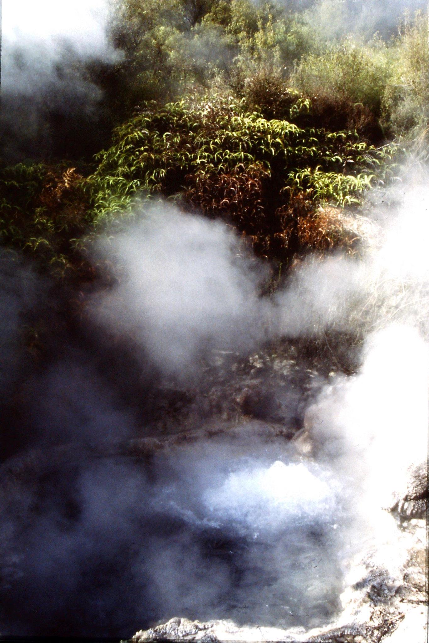 31/8/1990: 23: Orakeikorako soda fountain