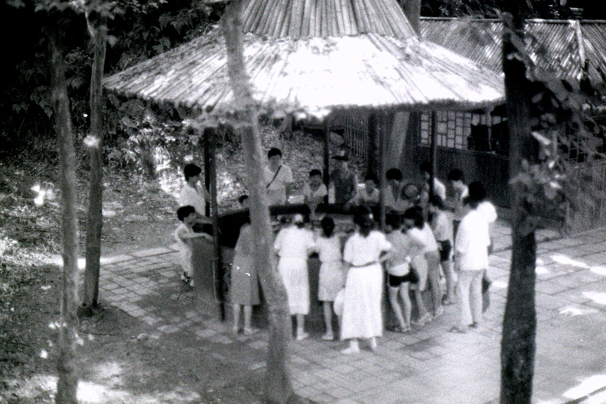 15/7/1989: 4: Yellow Dragon Spring Cave, children playing roulette