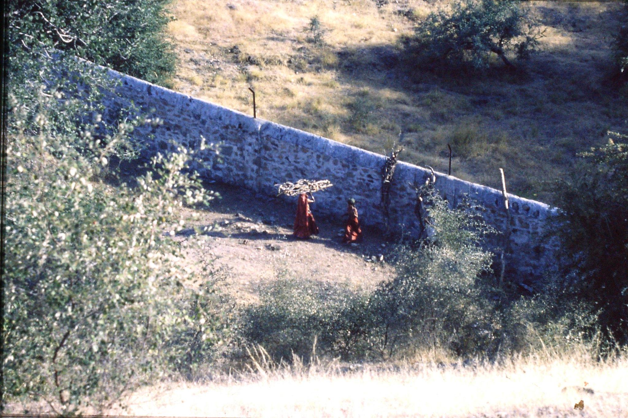 6/12/1989: 21: Ranakpur