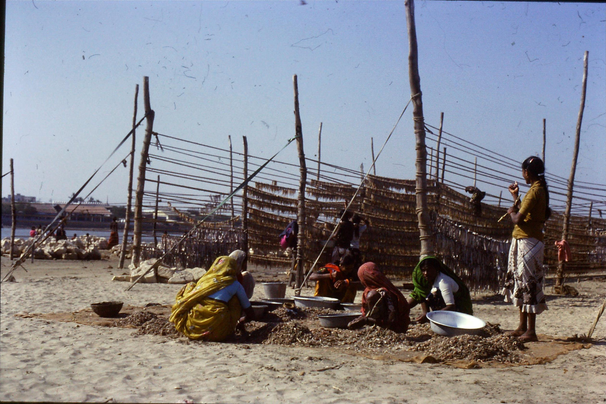 16/12/1989: 8: Diu Goghla fisherwomen