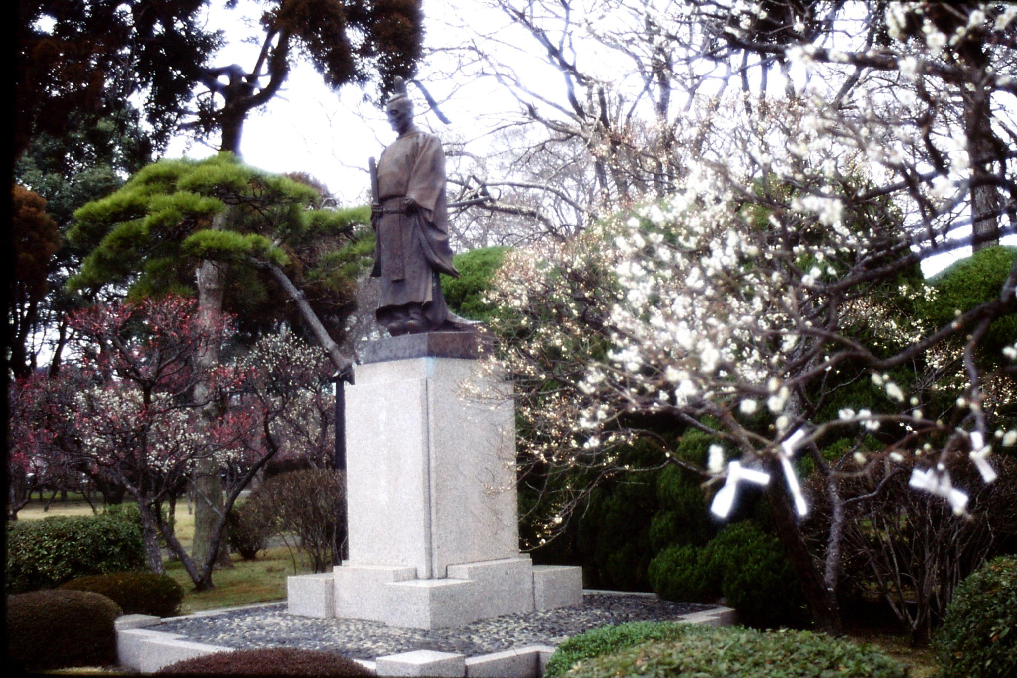22/1/1989: 5: Kumamoto Gardens