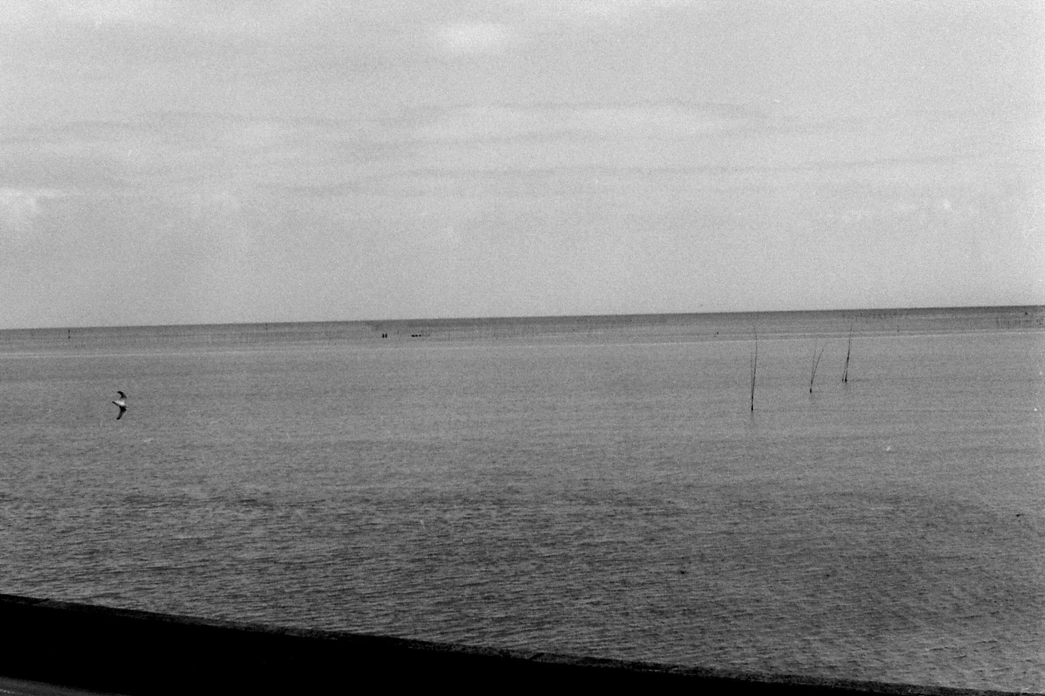 21/1/1989: 5: en route Nagasaki to Kumamoto