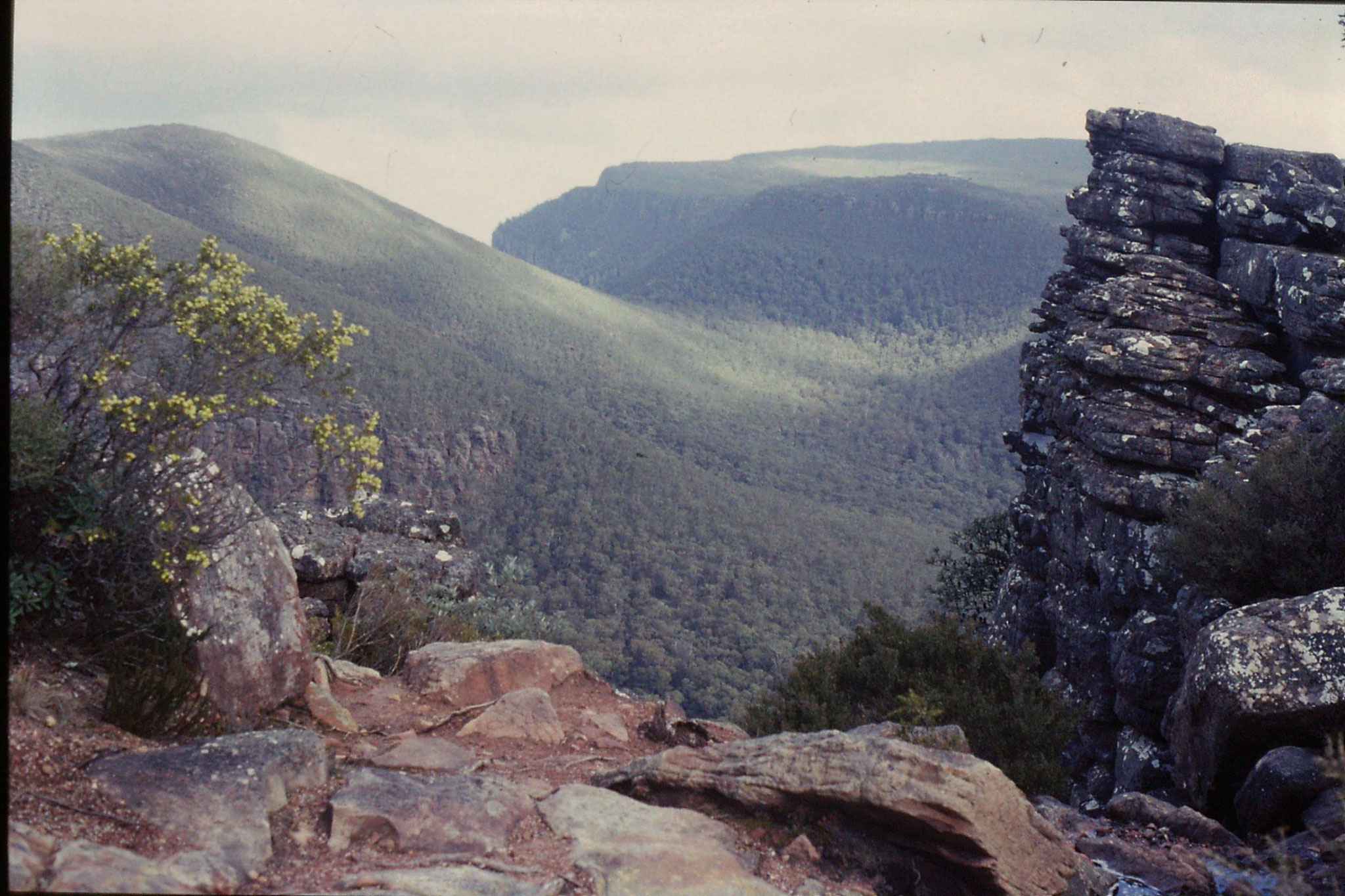 21/9/1990: 3: view south over Major Mitchell's Plateau from road up Mt William