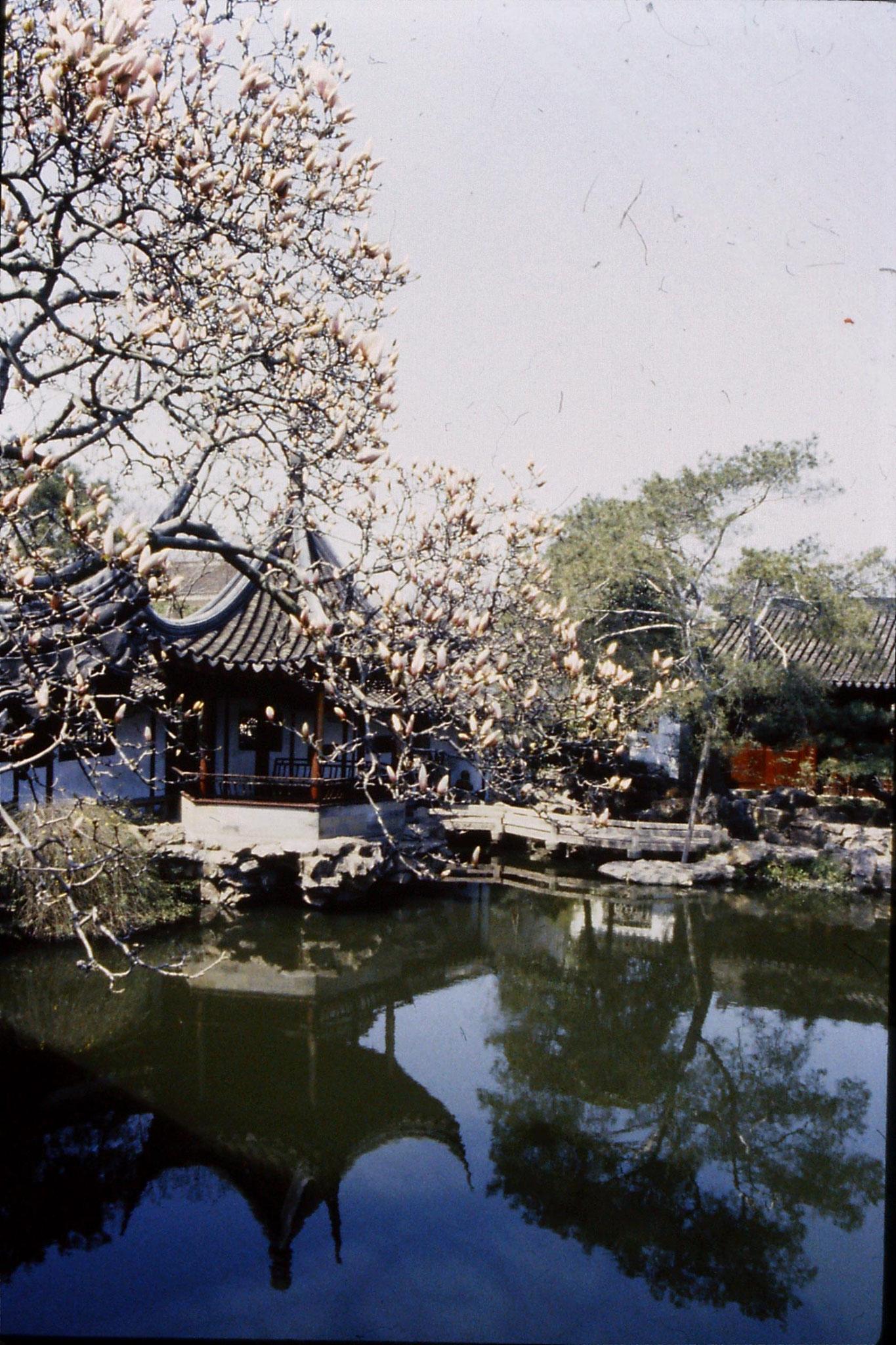 21/3/1989: 27: Suzhou Wangshi Gardens