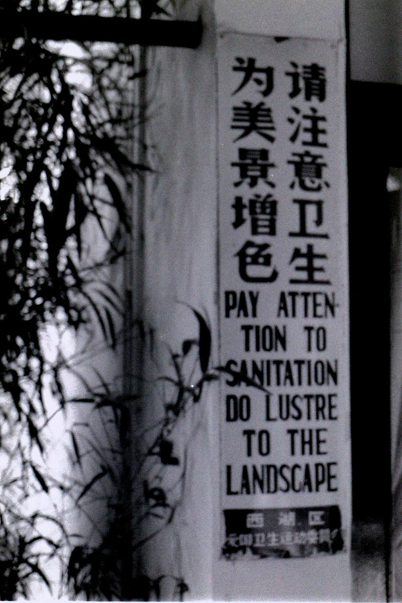 1/6/1989: 9: Botanic Garden