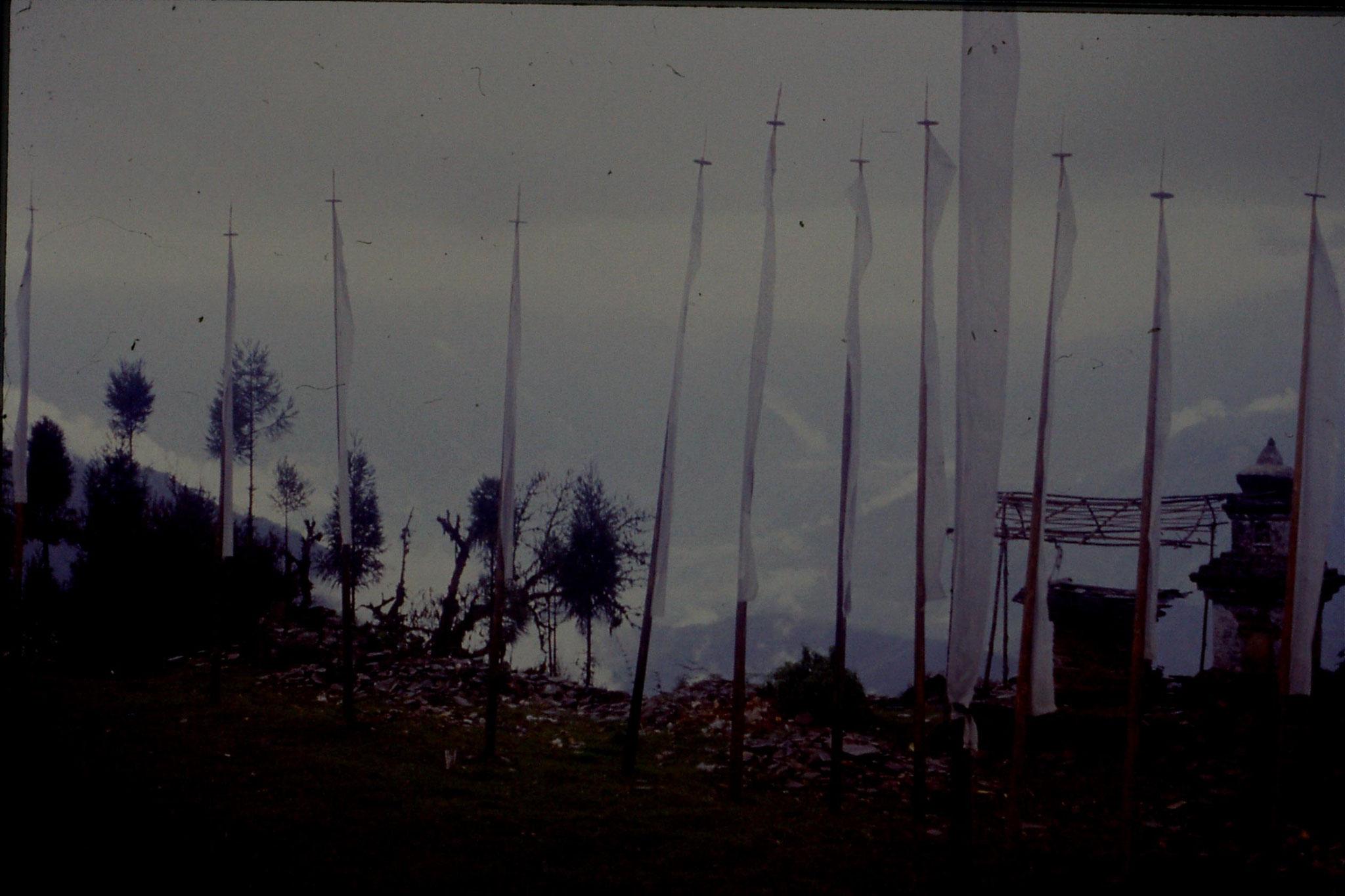115/27: 27/4/1990 Pelling - Sanga Choling monastery