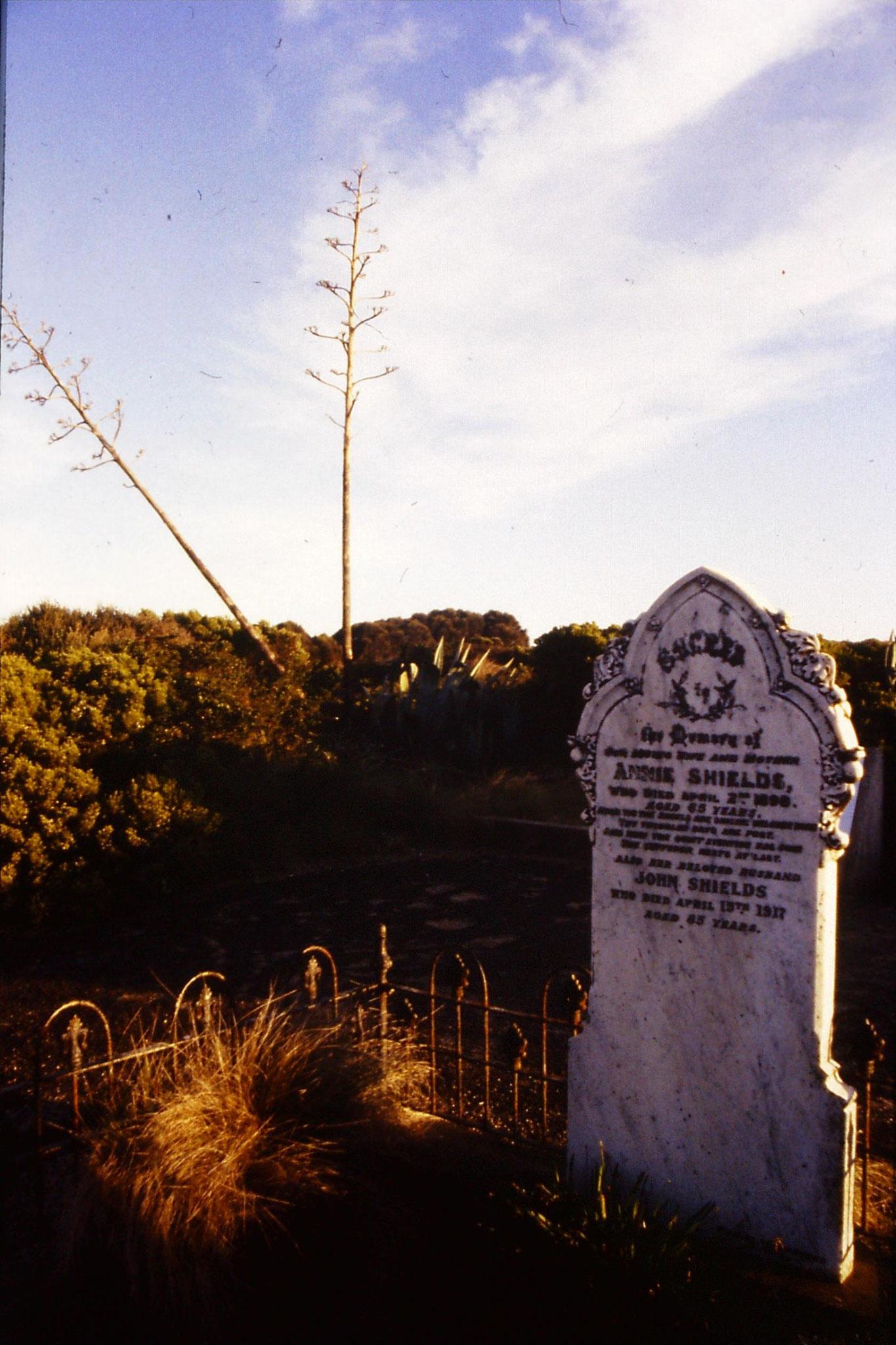 19/9/1990: 31: loch Ard graveyard