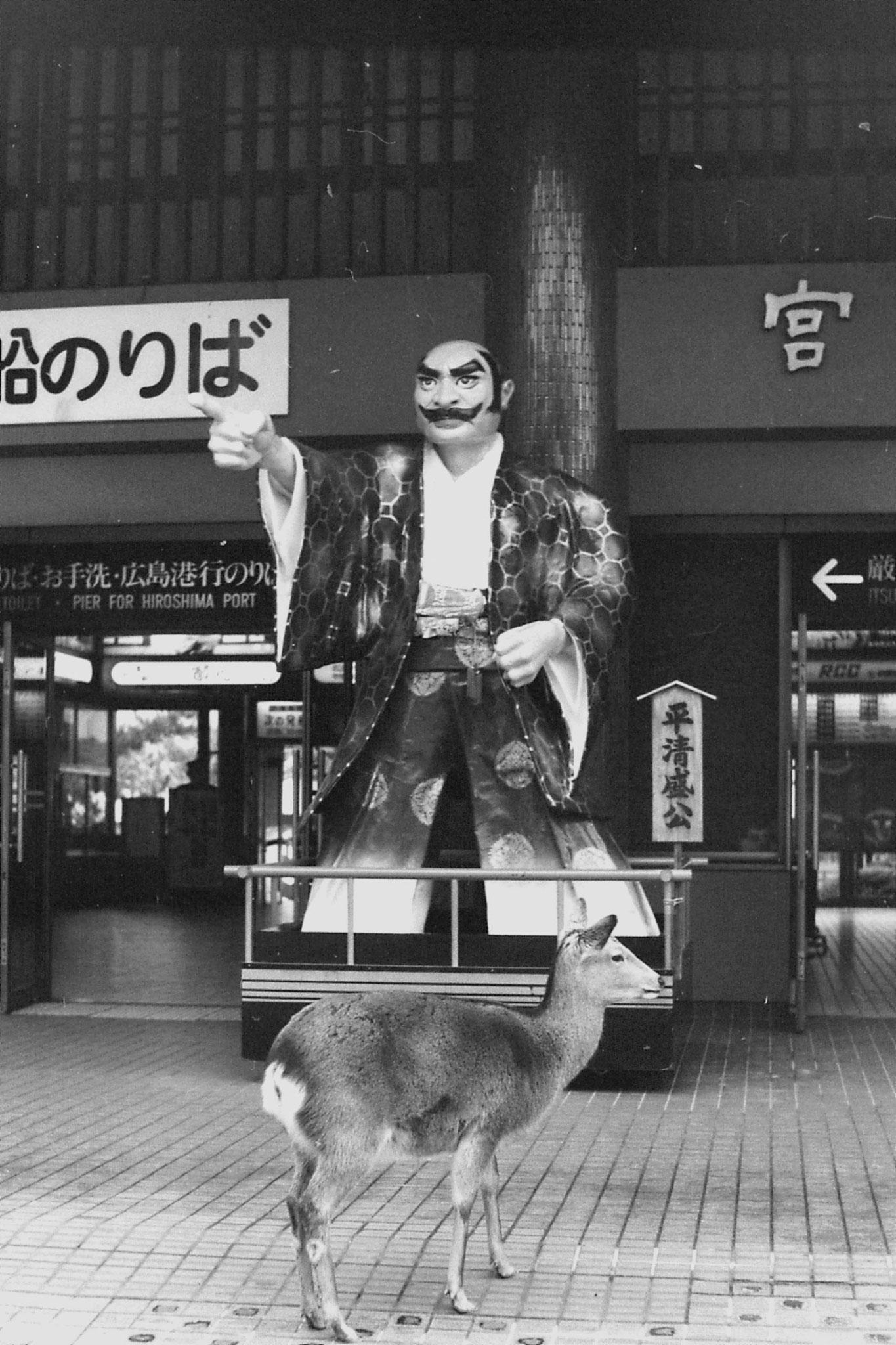 23/1/1989: 28: Miyajima