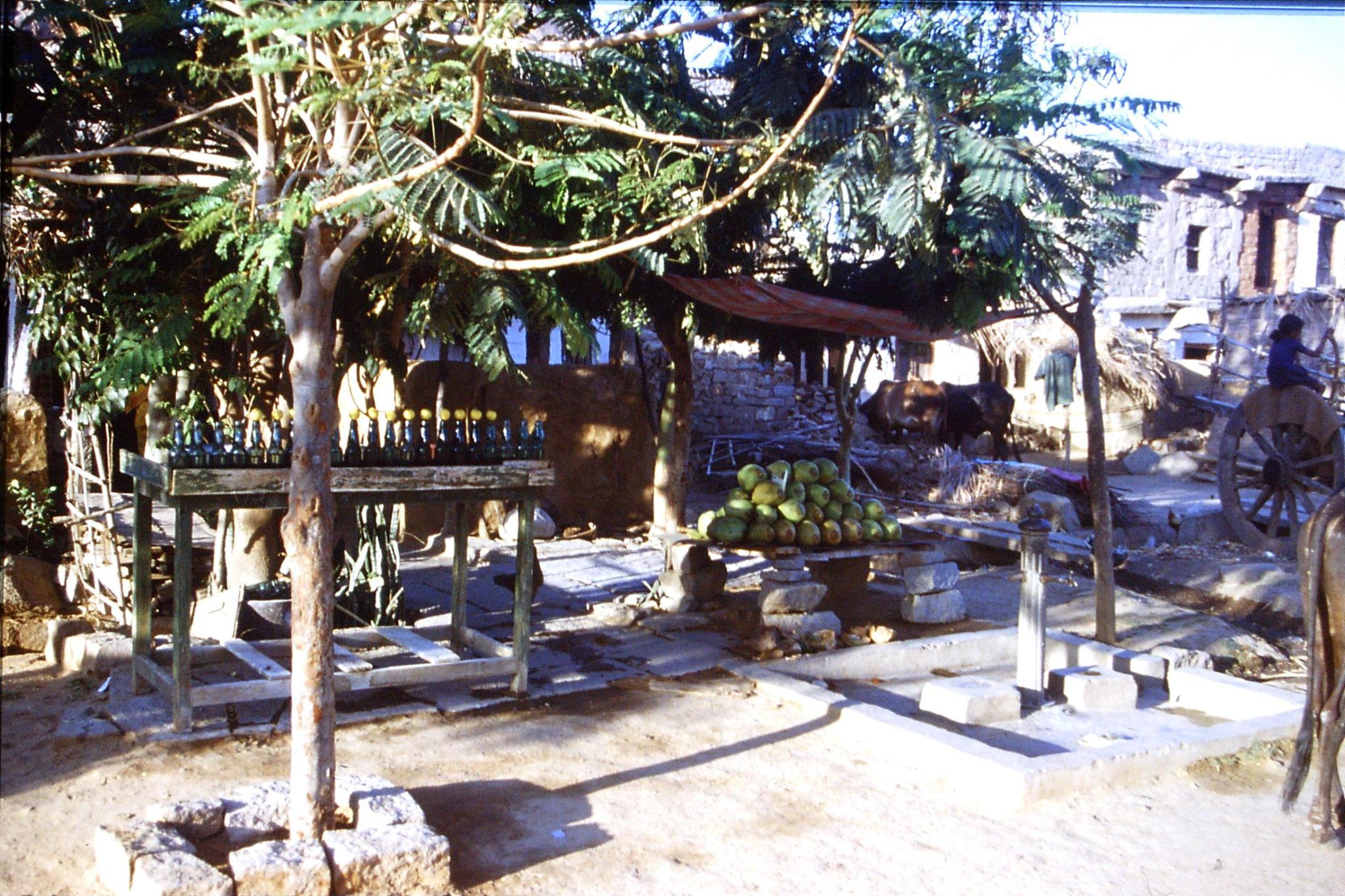 108/28: 20/3/1990 Hampi - cocnut and homemade lime soda stall