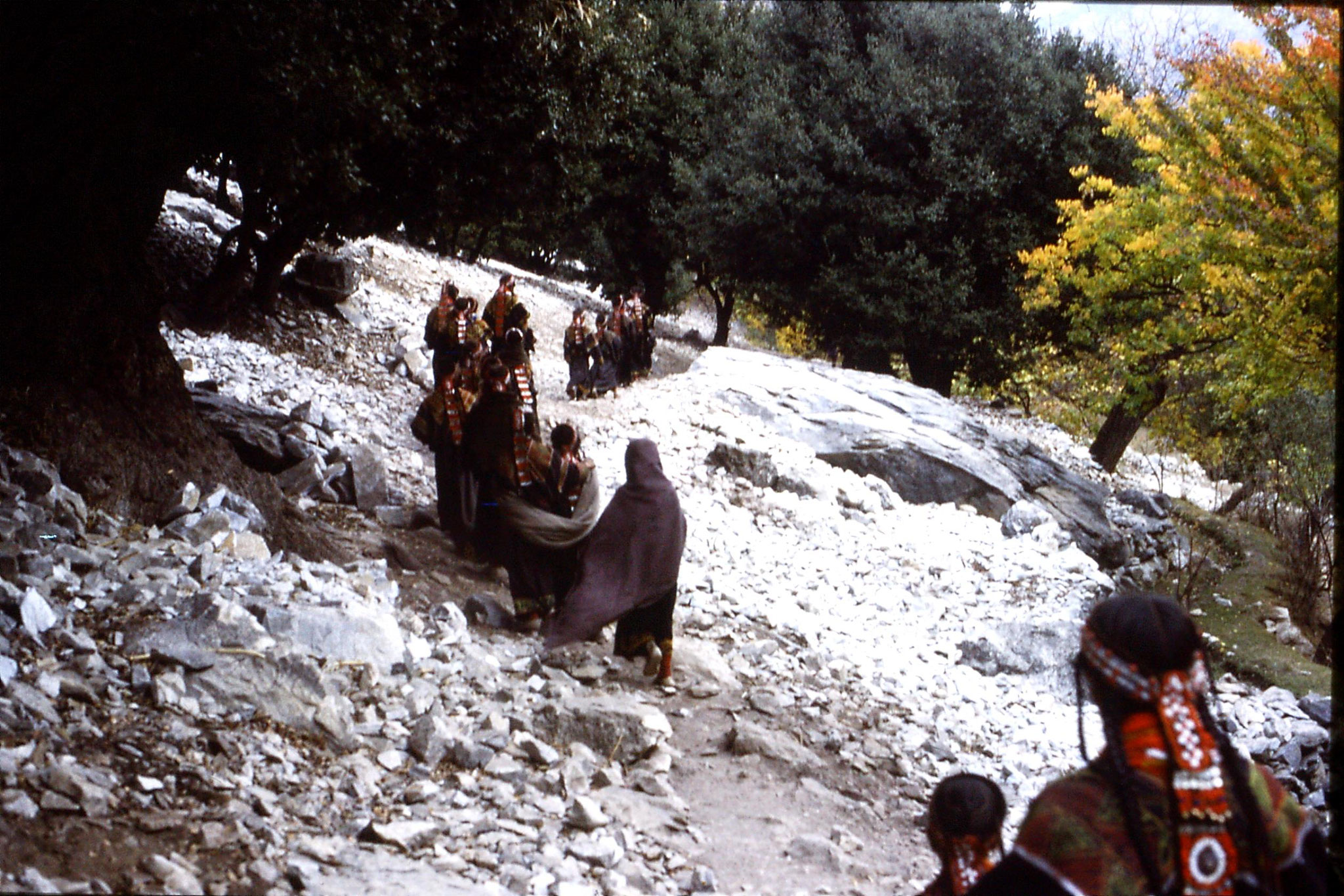 1/11/1989: 4: Kalash Valley, after bridal procession