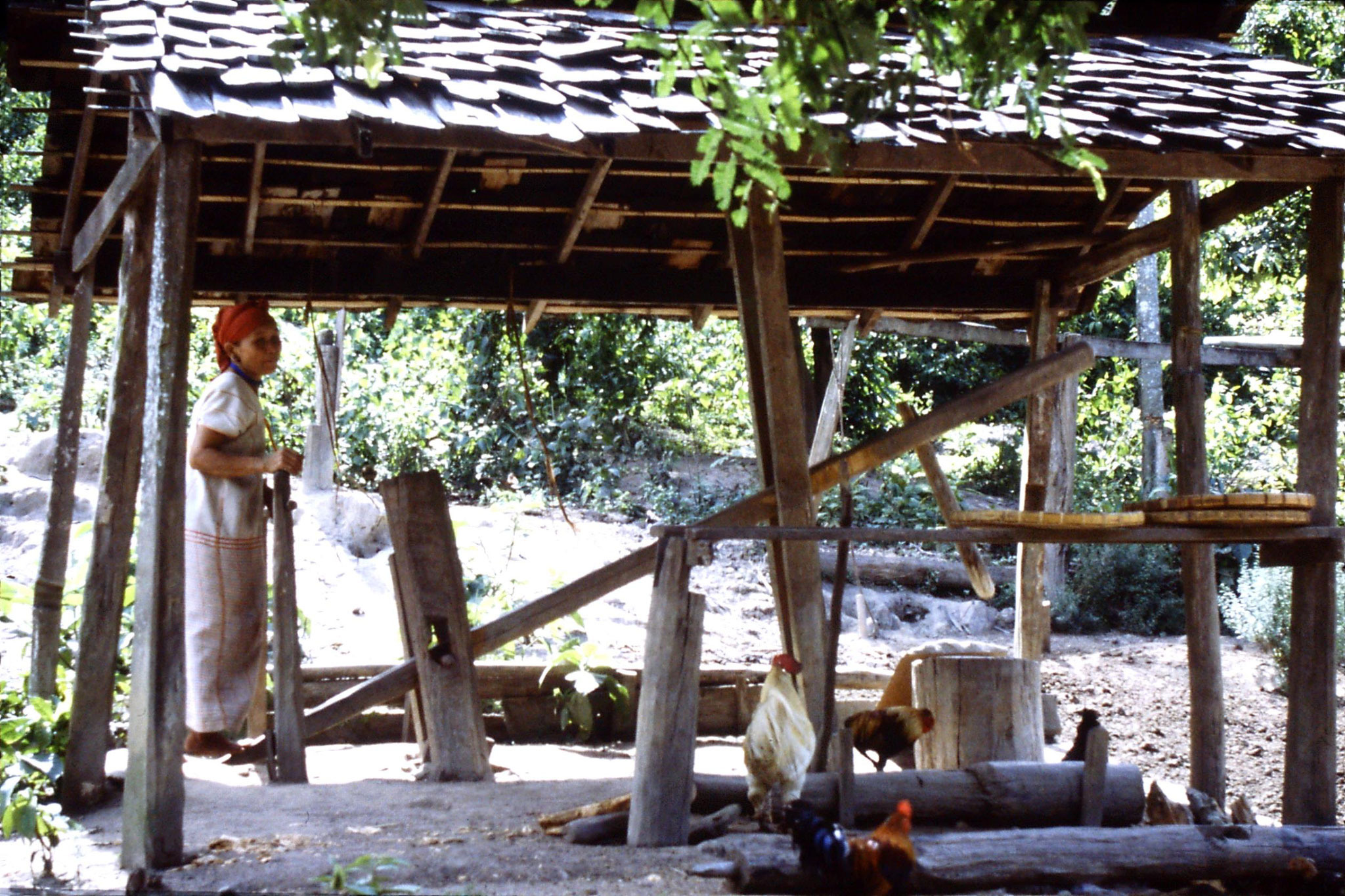 12/6/1990: 21: Trek - Hue Kom Karen village, woman pounding rice