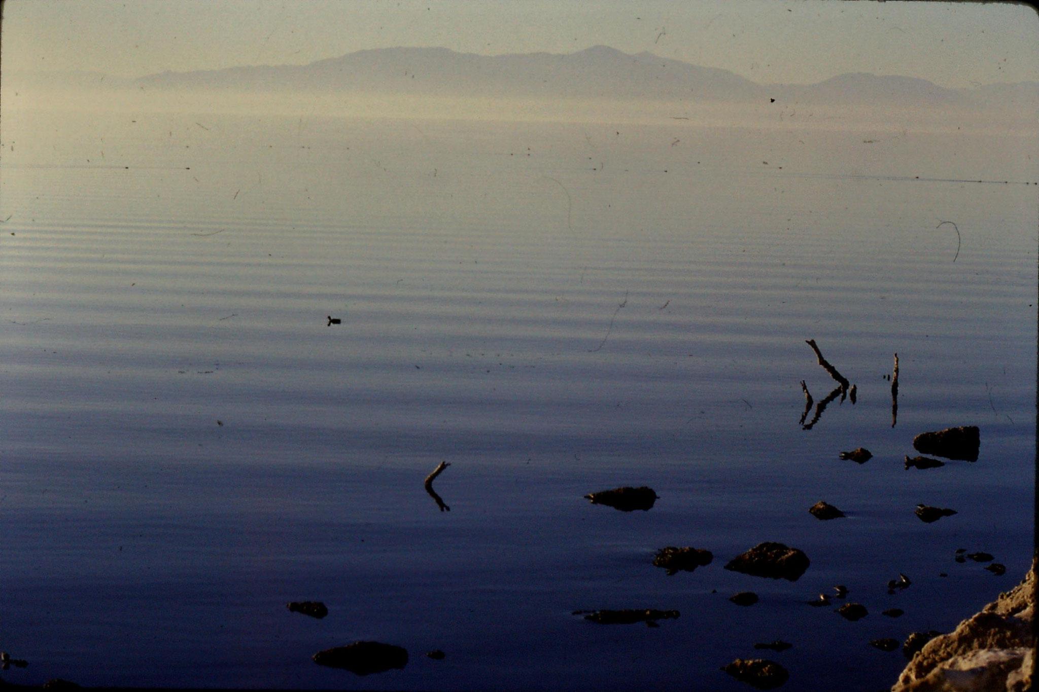 9/12/1990: 0: Salton Sea CA