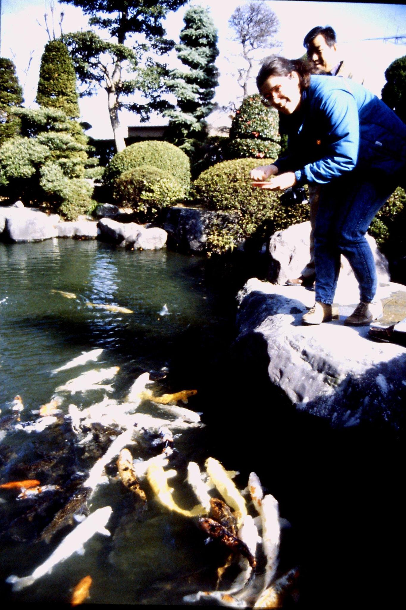 27/1/1989: 18: E feeding carp