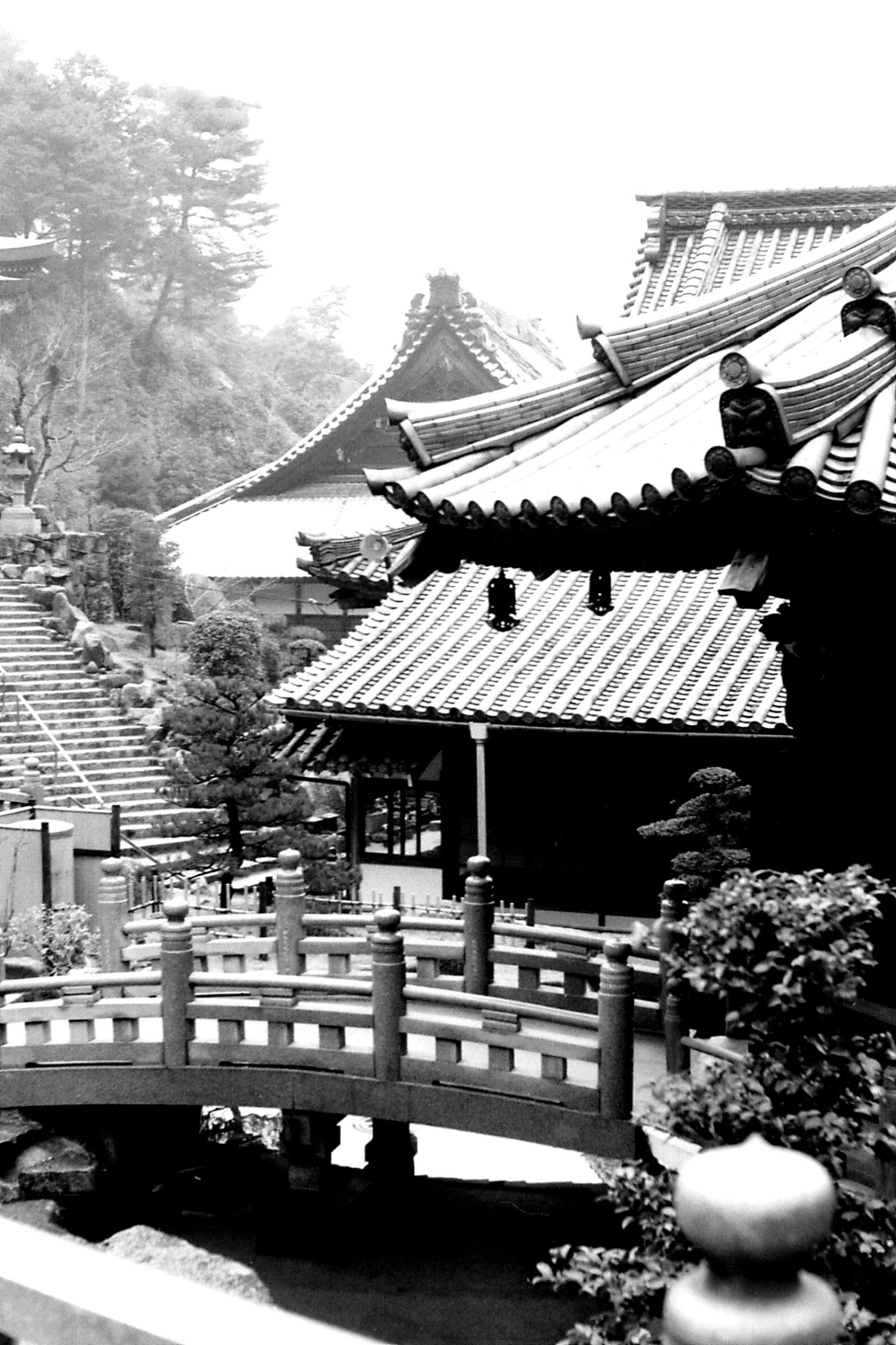 23/1/1989: 3: Miyajima: Dashoin Temple