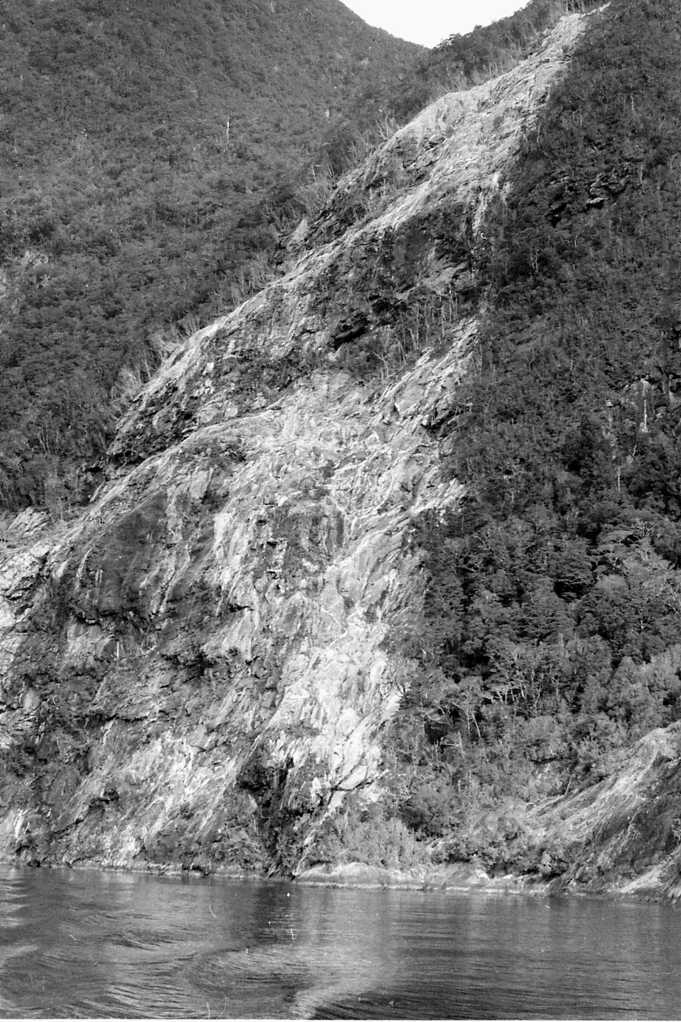 15/8/1990: 17: tree avalanche two and half years previously