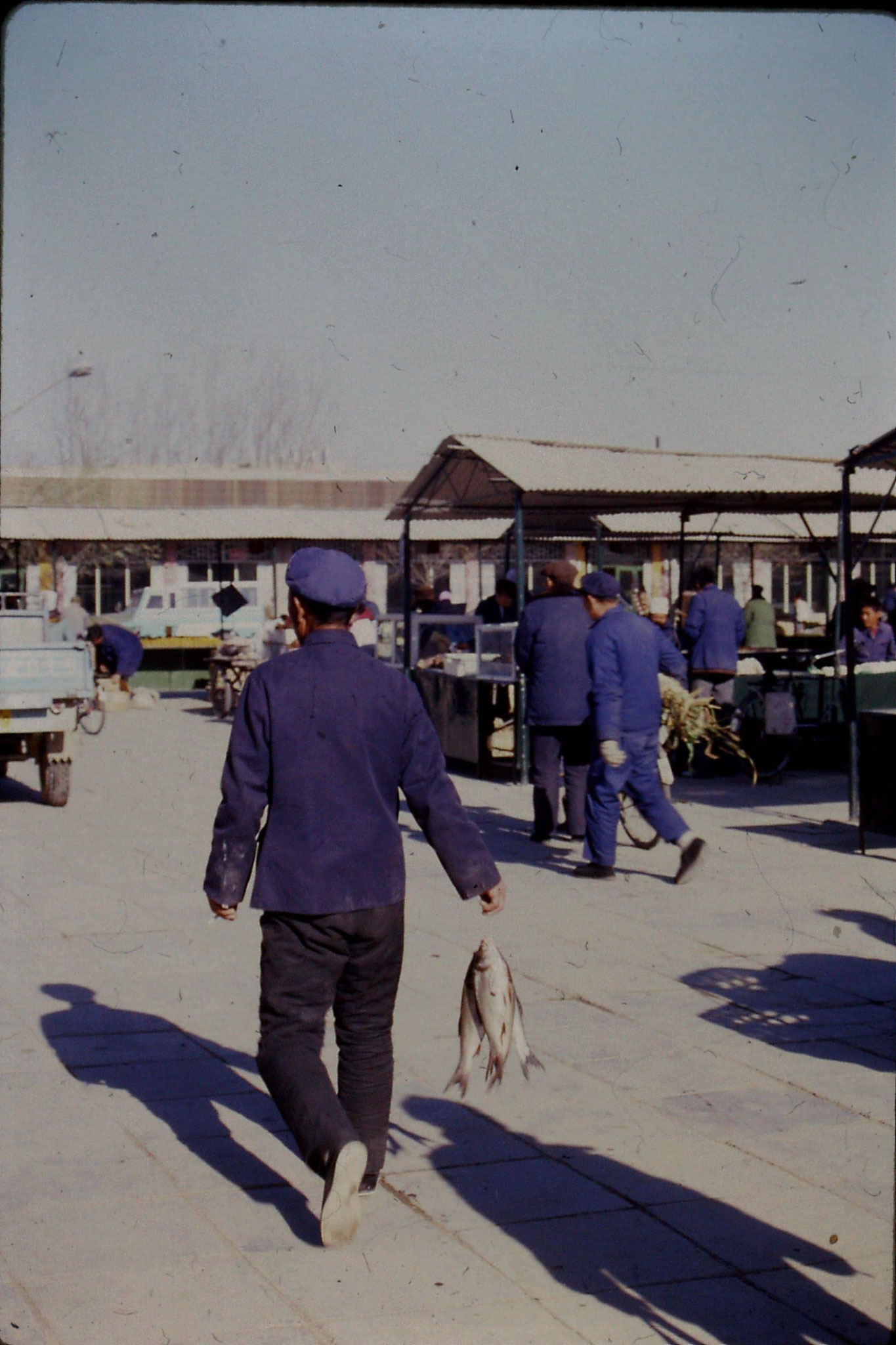 3/12/1988: 31: day trip to Shunyi