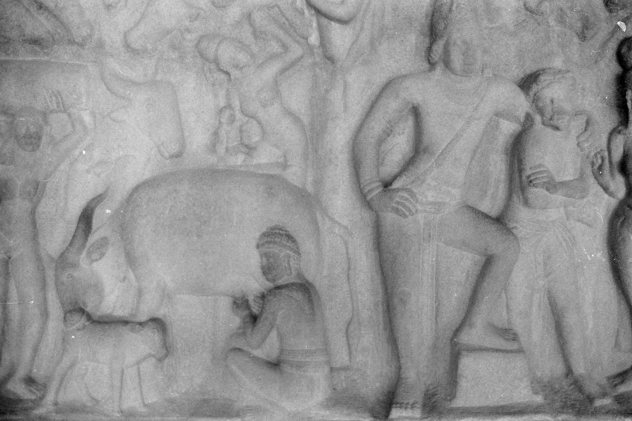 19/1/90: 26: Mahabalipuram - 7th century bas relief