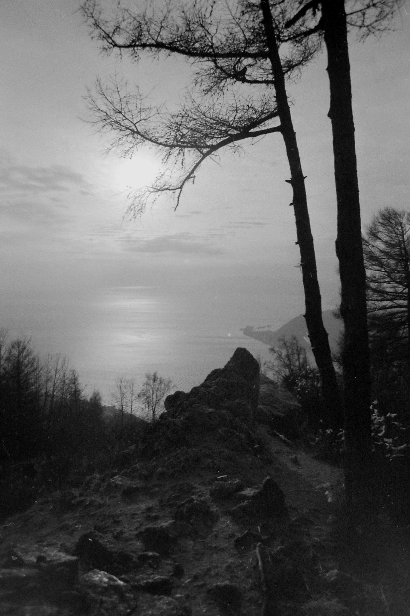 23/10/1988: 18: Lake Baikal - scraps of material on trees