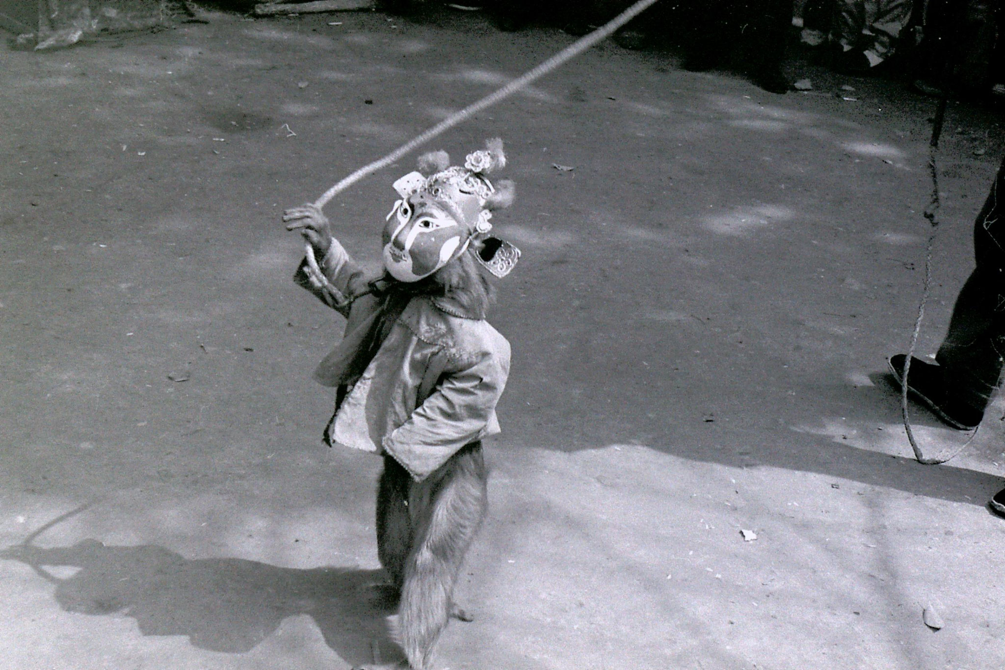 22/3/1989: 22: Suzhou monkey