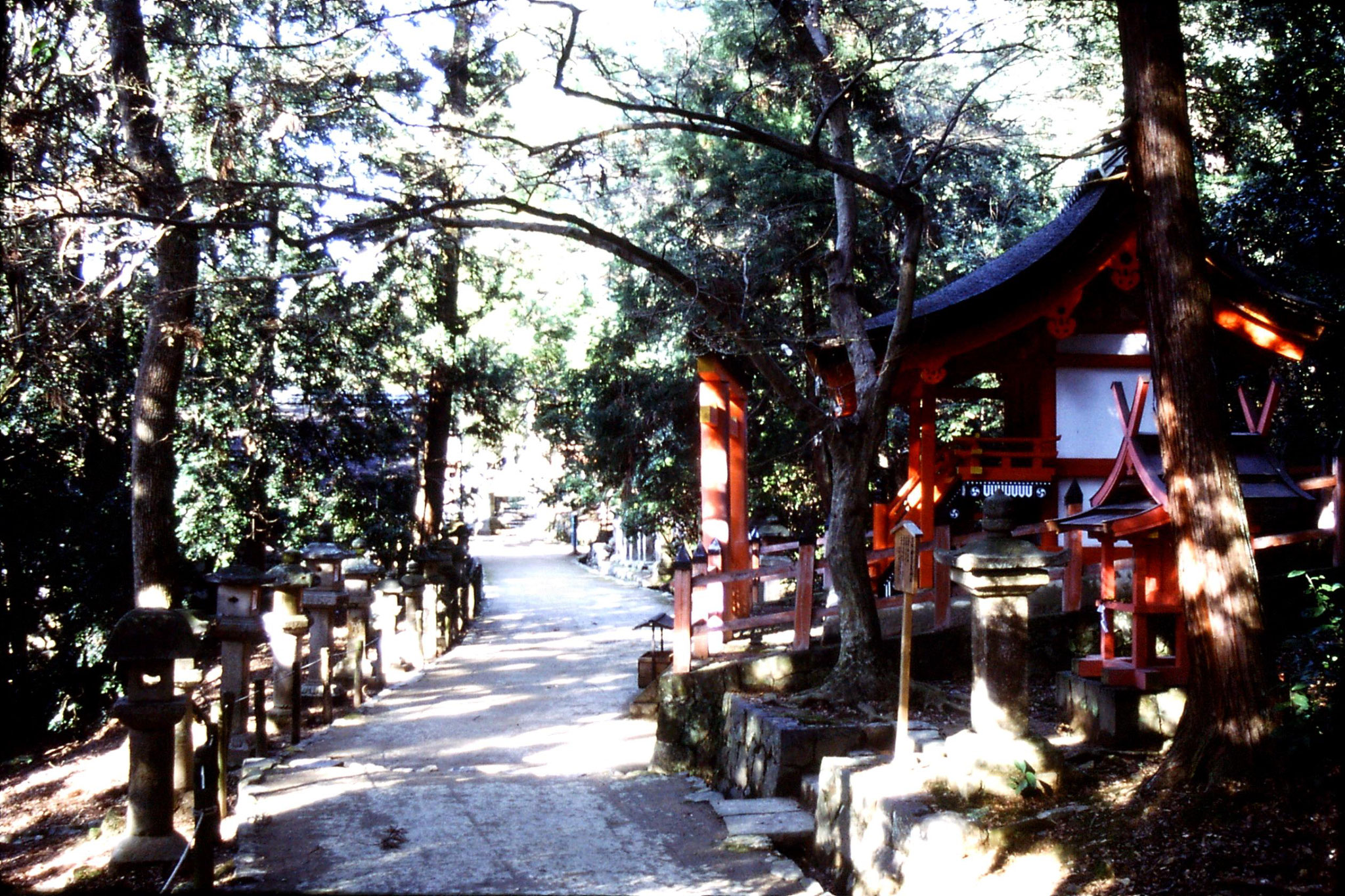 26/1/1989: 2:  Kyoto