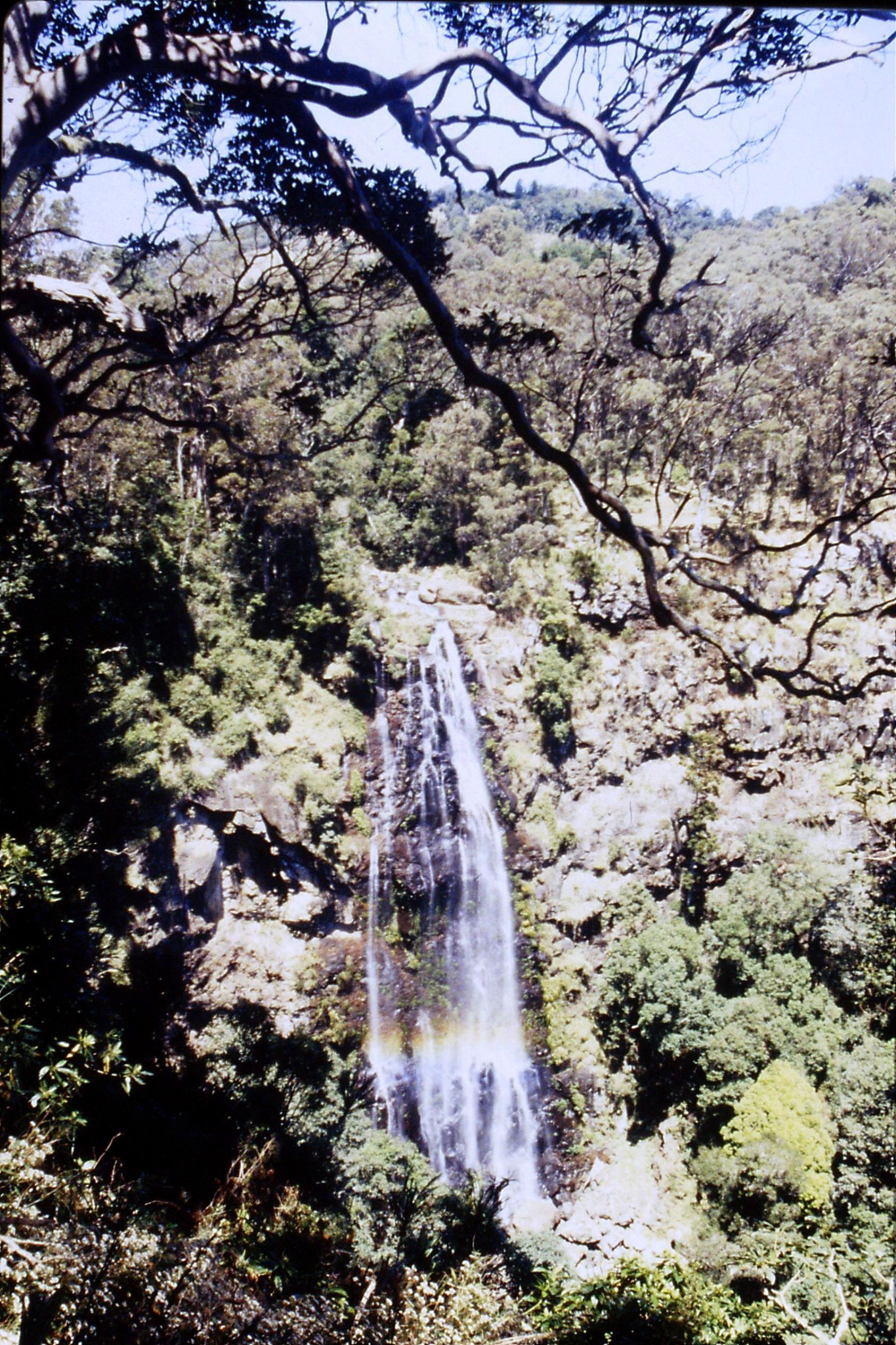 13/10/1990: 13: Mt Lamington, Moran's Falls