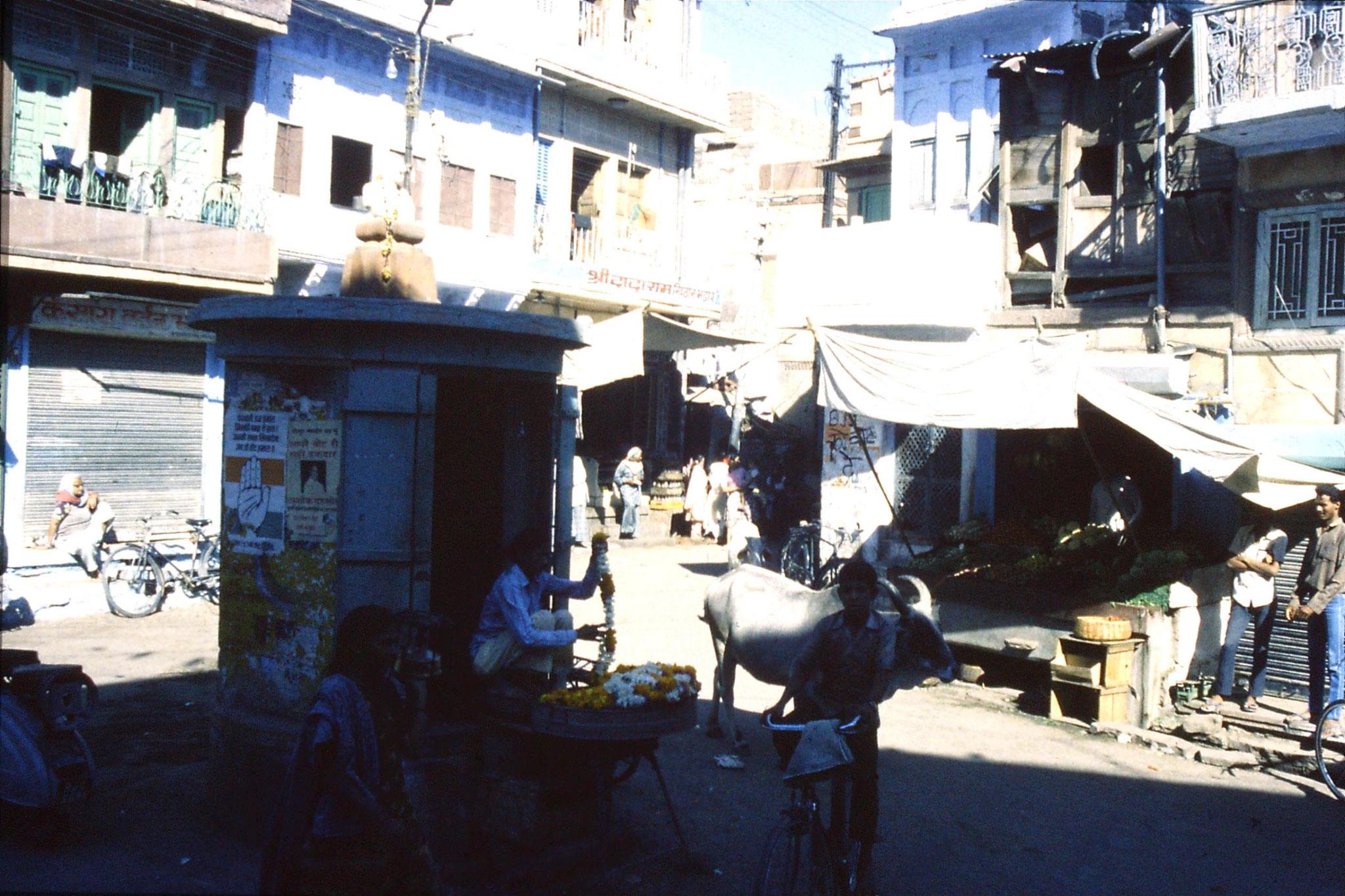 29/11/1989: 8: Jodhpur
