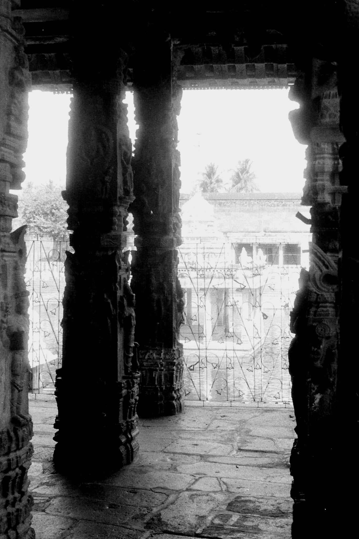 19/1/90: 21: Kanchipuram  - Varadharaja Perumal