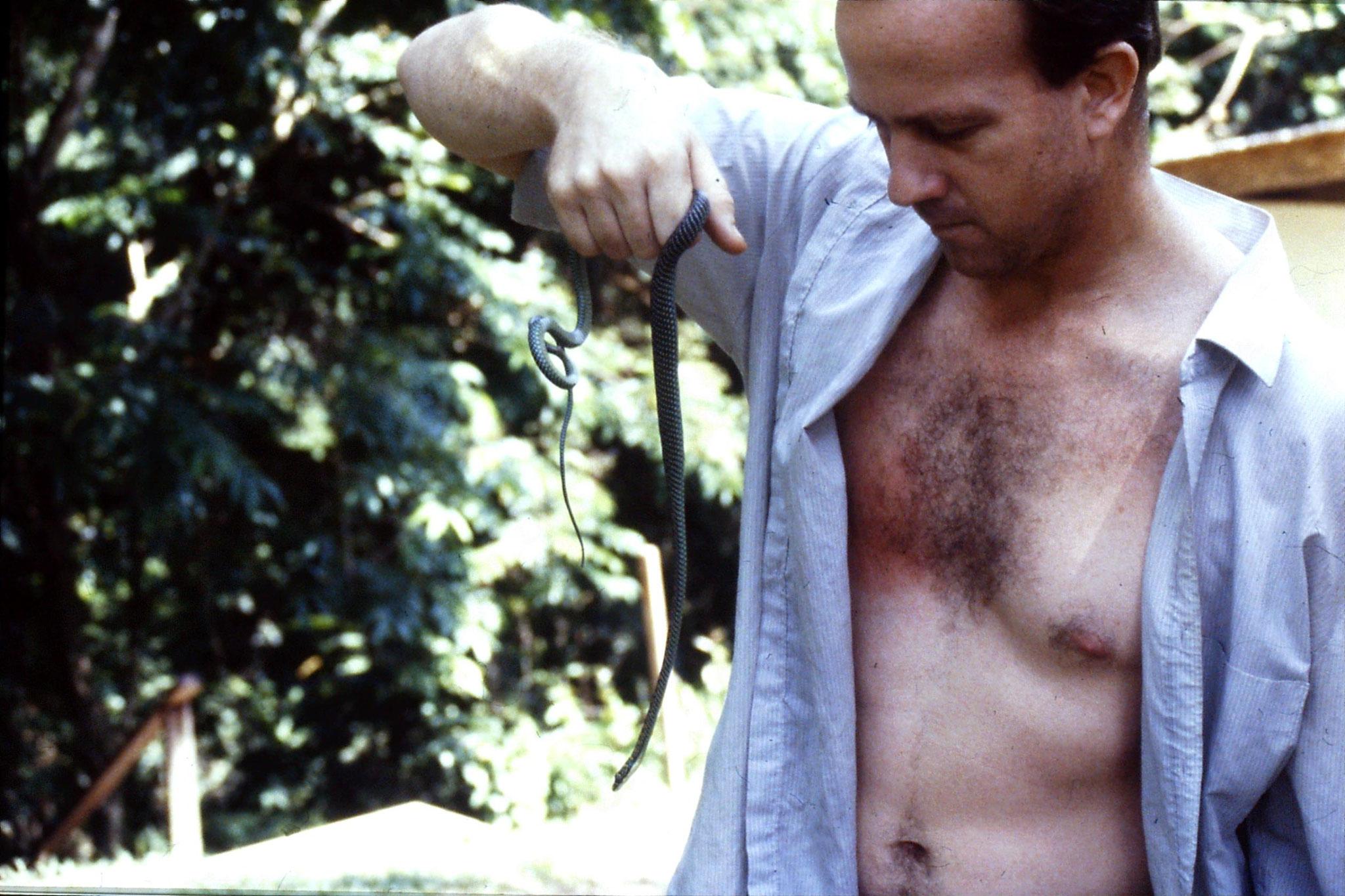 26/6/1990: 22: Tamen Negara Paradise Tree Snake