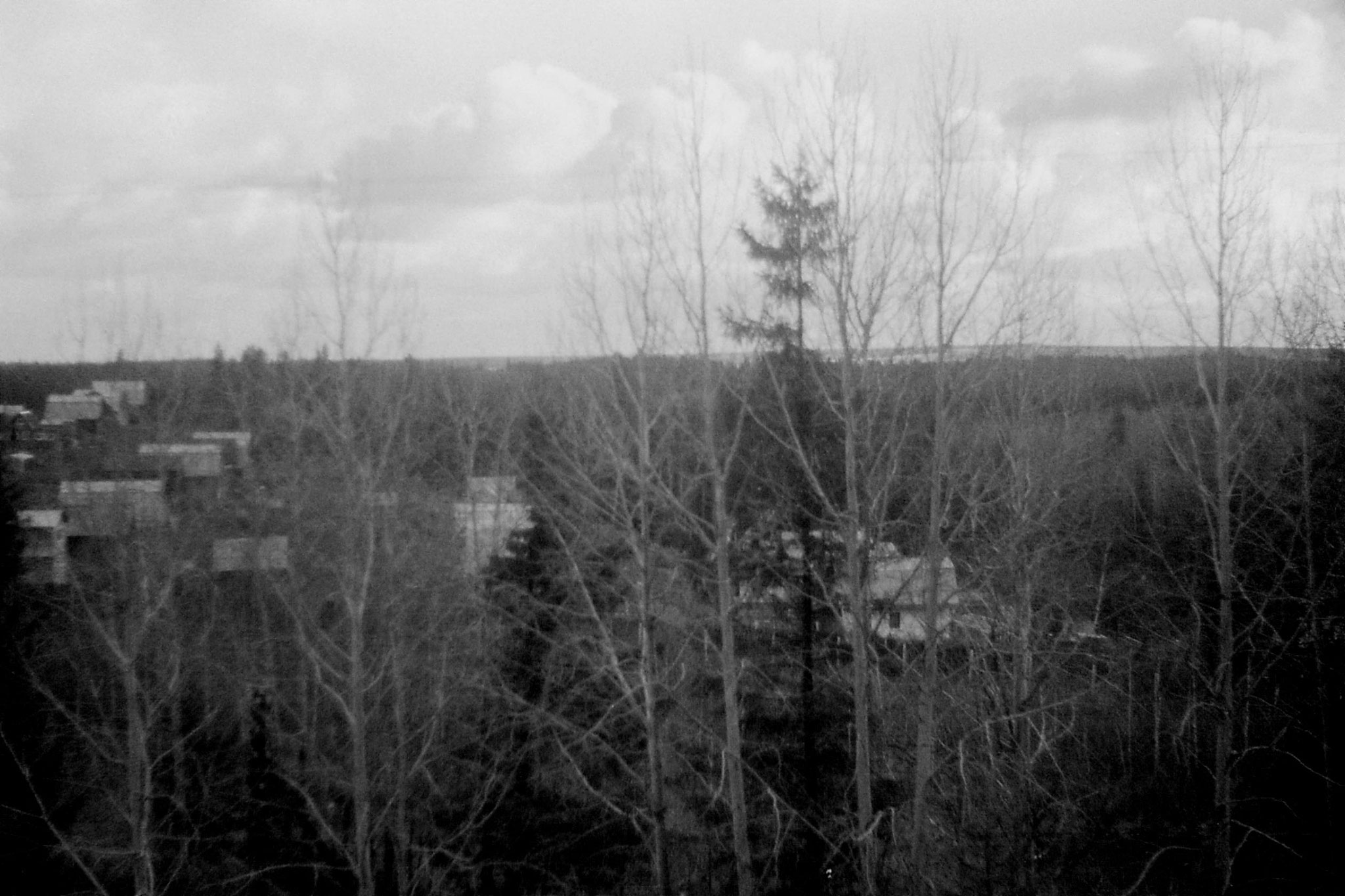 19/10/1988: 19: from Siberian Express between Balezino and Perm