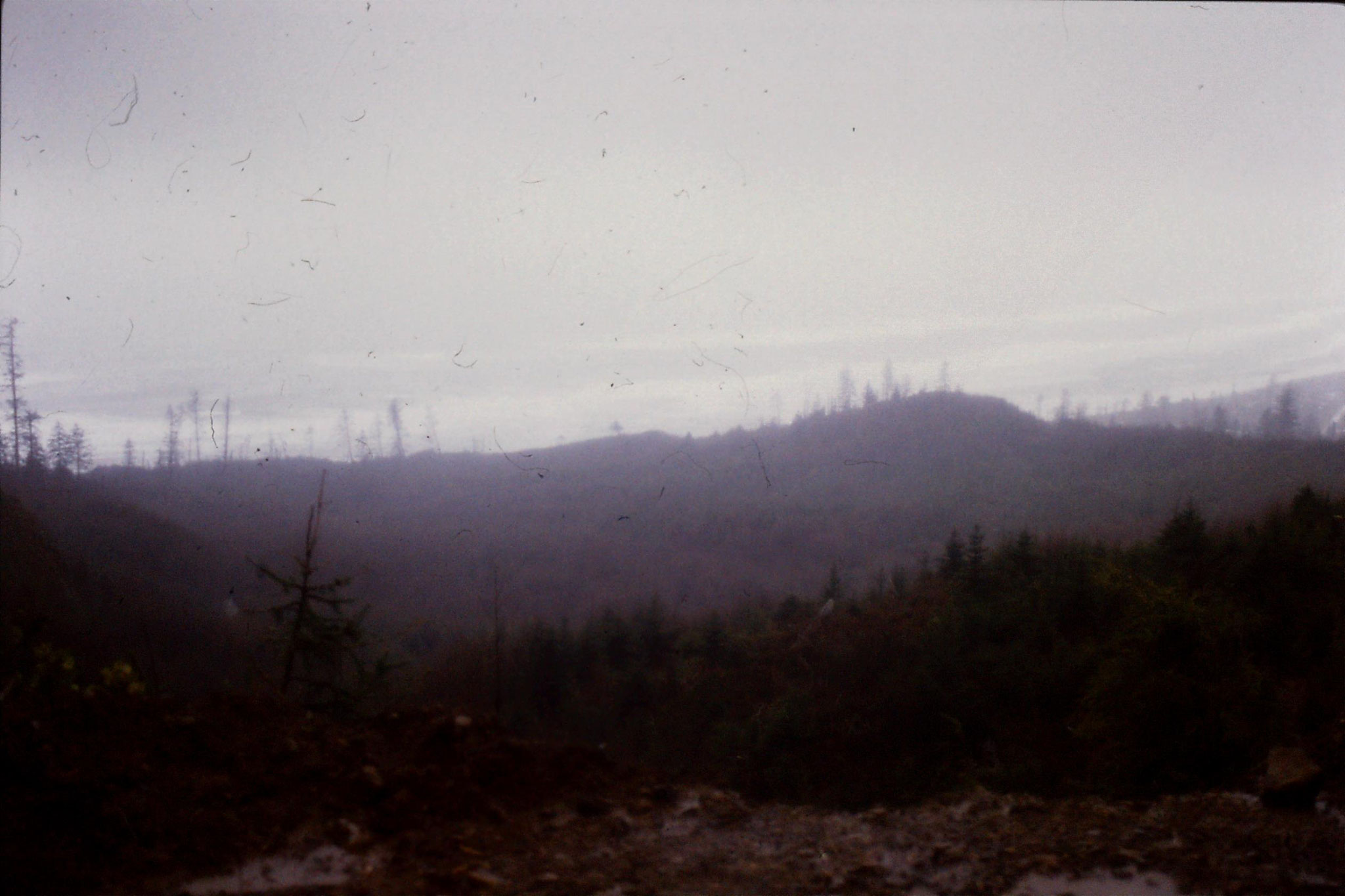 12/2/1991: 32: Pacific Ocean from Cape Meares