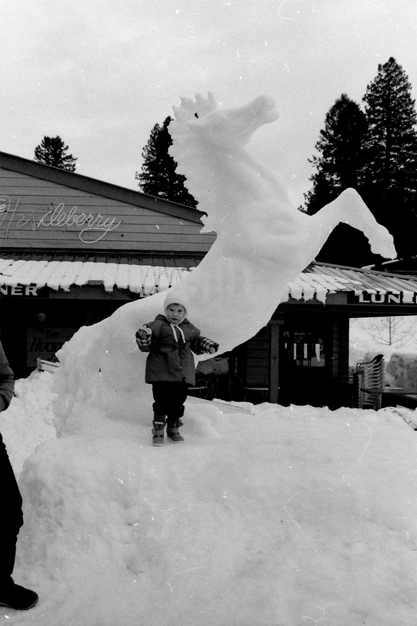 2/2/1991: 22: McCall Ice Festival