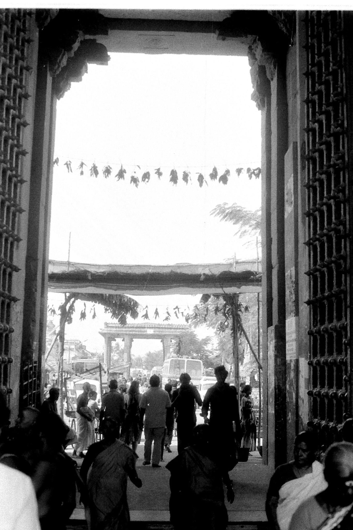 19/1/90: 23: Kanchipuram  - Varadharaja Perumal