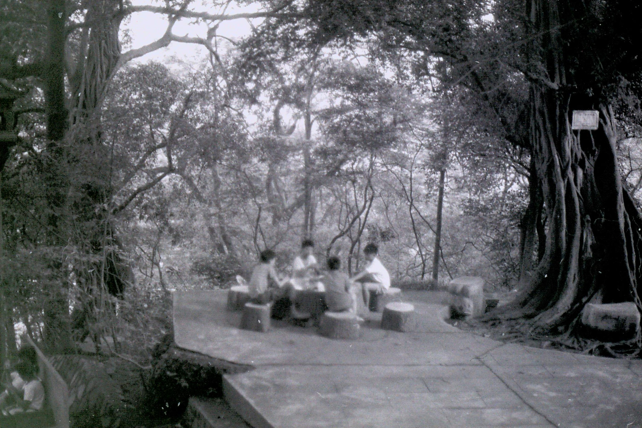 19/5/1989: 35: Guangzhou boys playing cards below Sun Yat Sen memorial