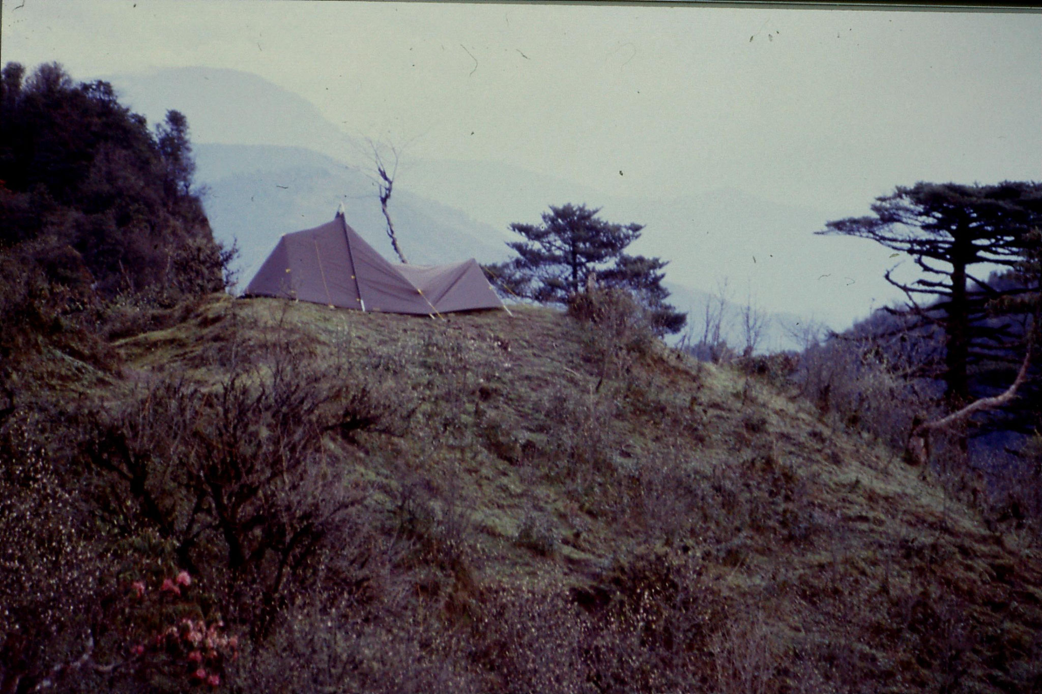 5/5/1990: 7: Bikkebhanging: our tent