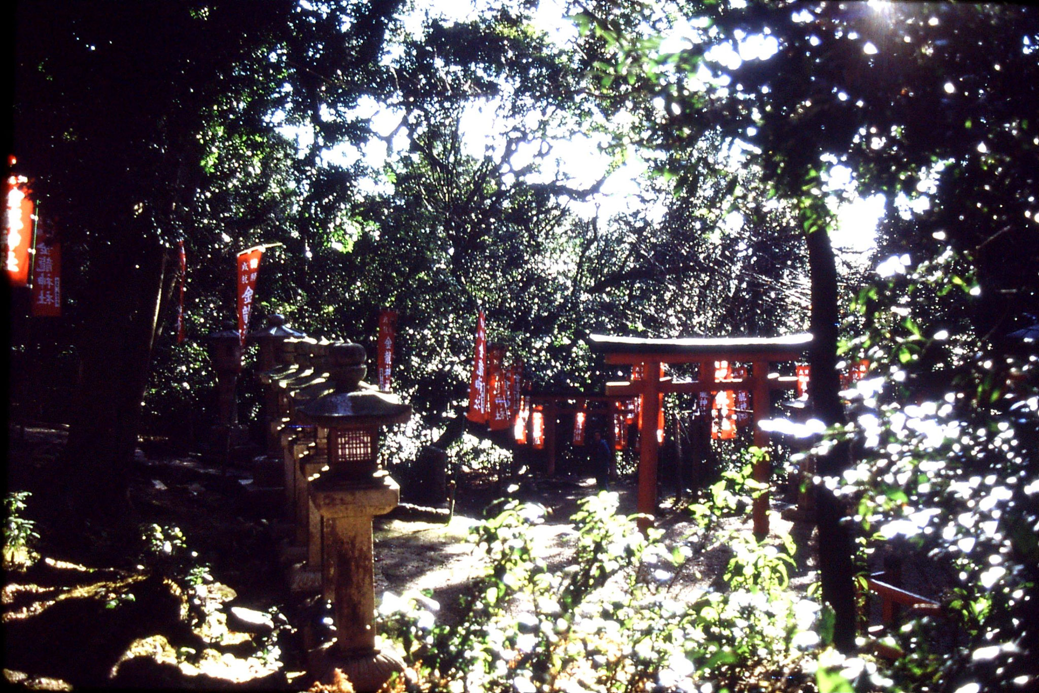 26/1/1989: 3:  Kyoto